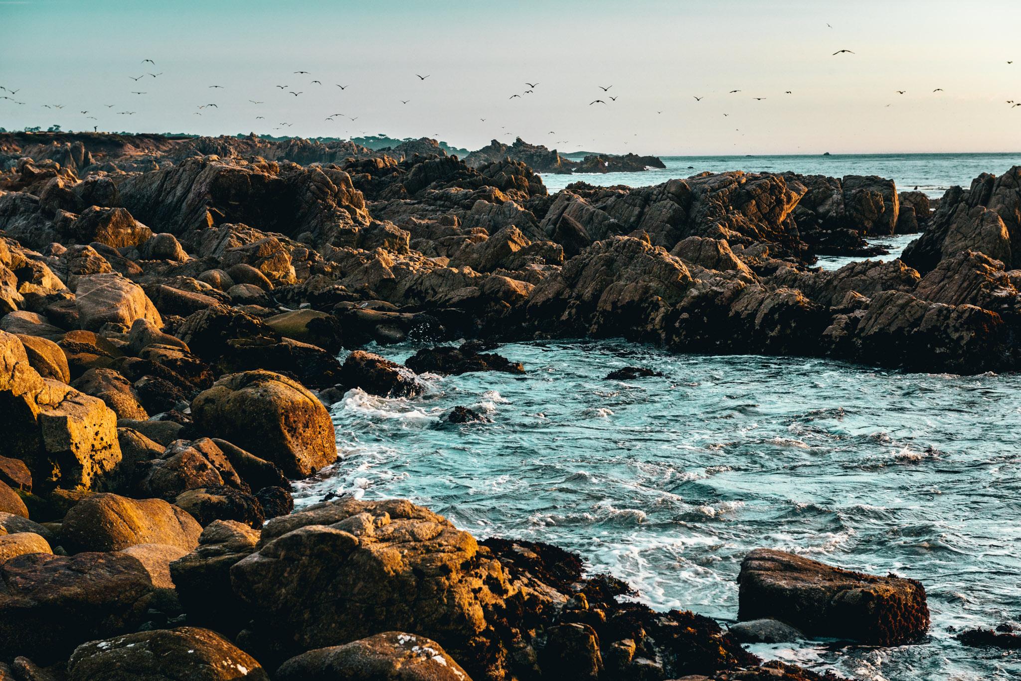California : Monterey : China Rock