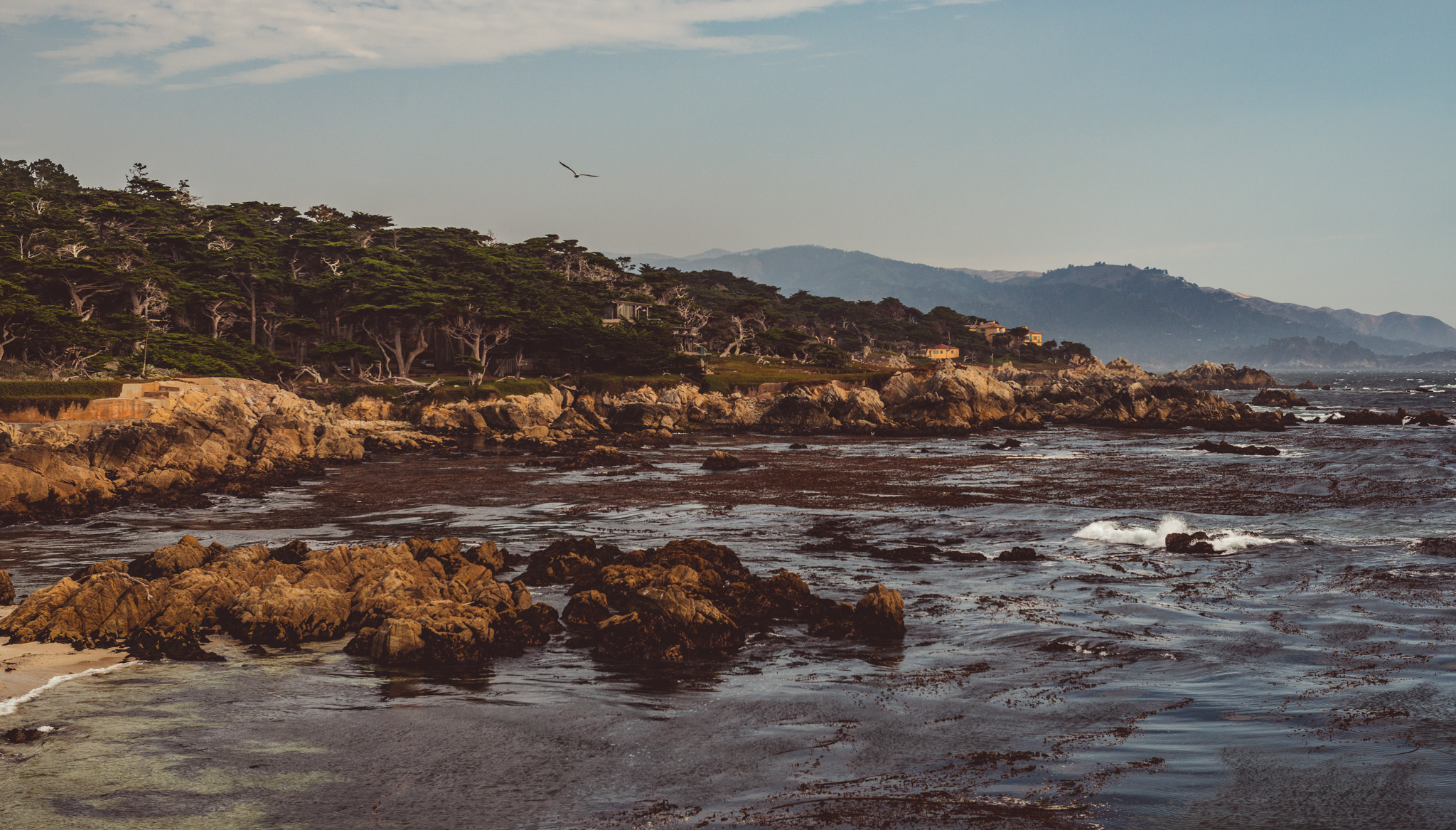 California : Monterey : Cypress Point Lookout