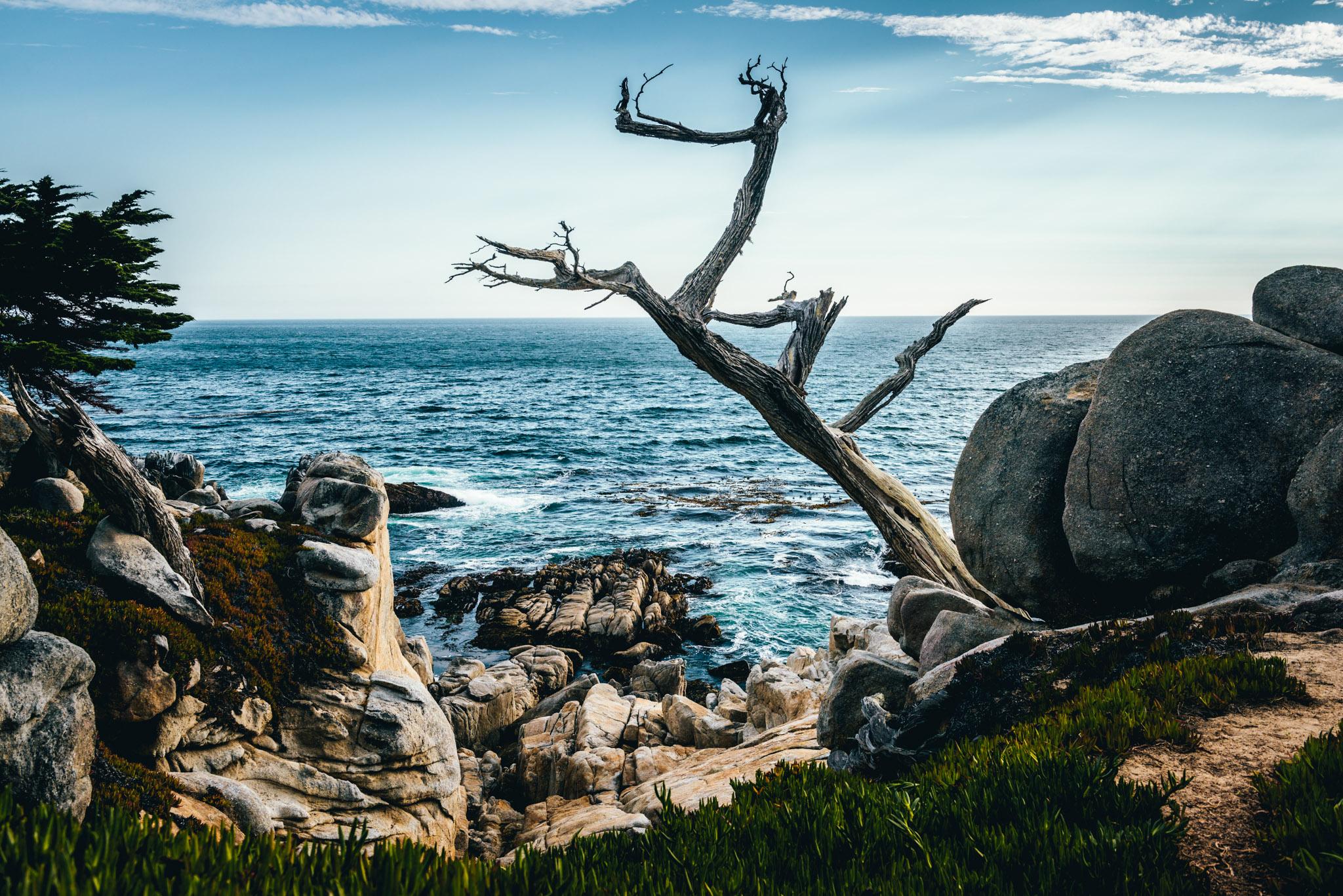 California : Monterey : Pescadero Point