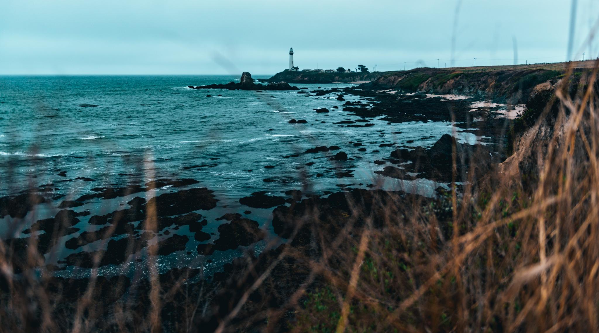 California : Pescadero : Pigeon Point Lighthouse