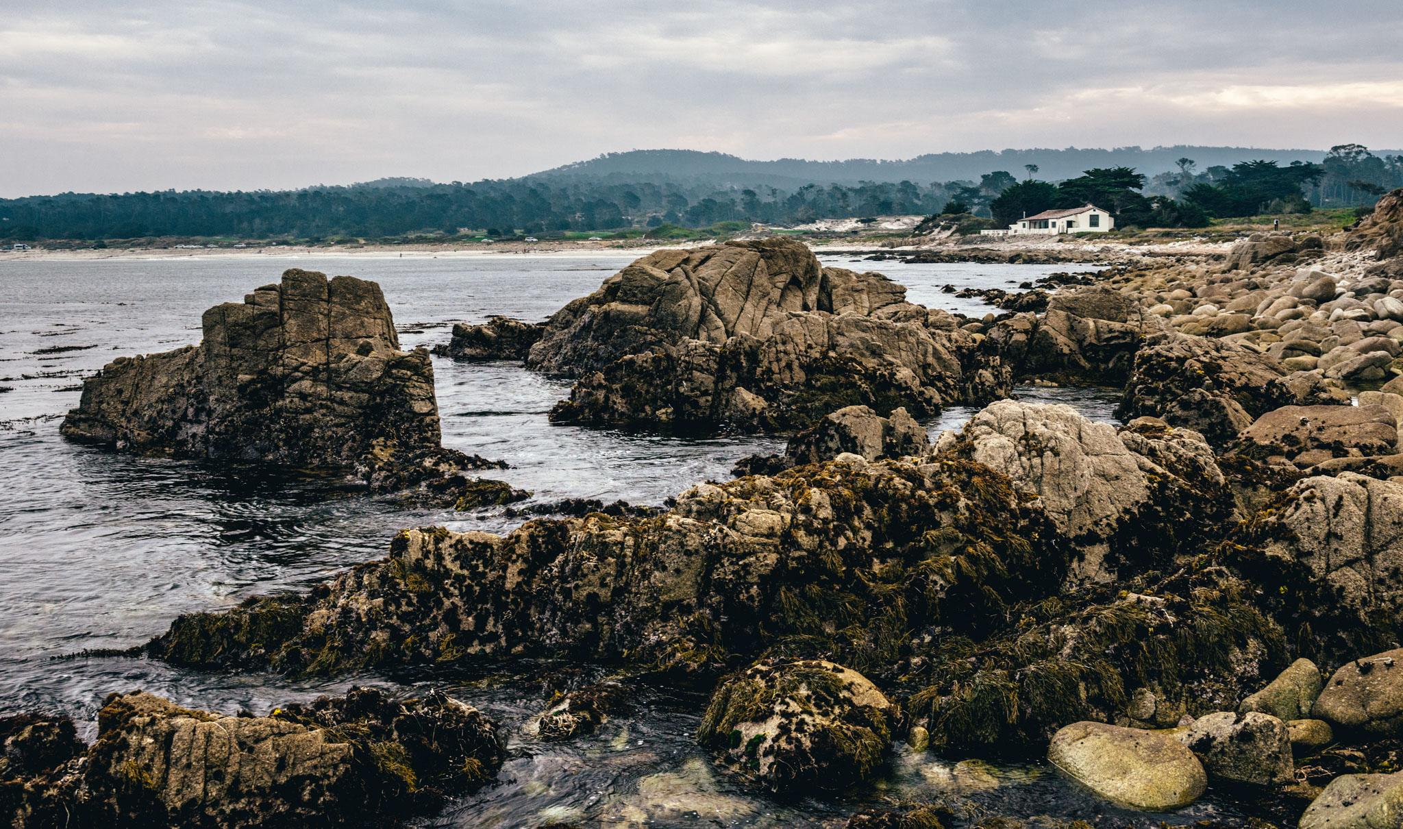 California : Monterey : The Restless Sea