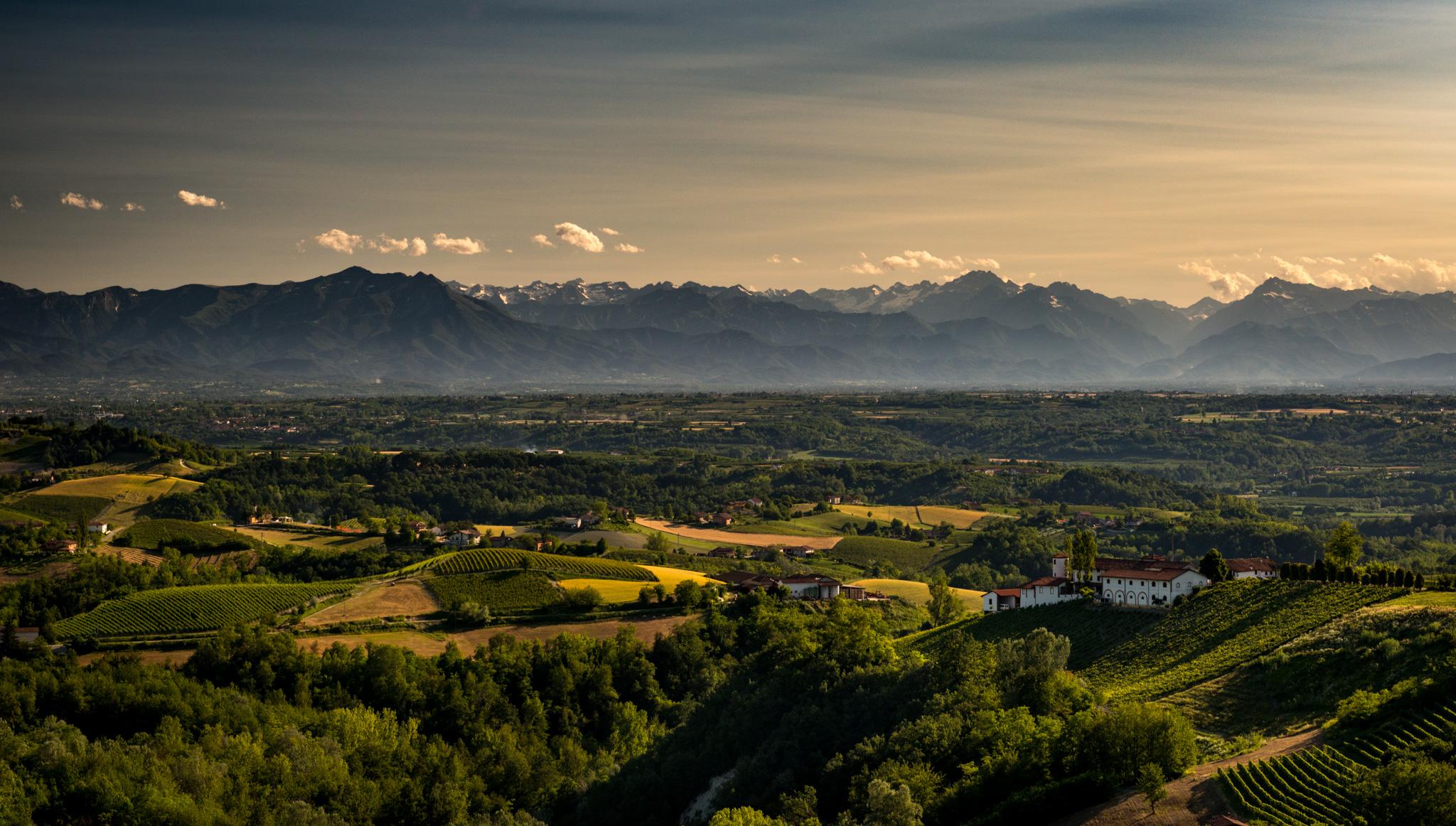 Italy : Piedmont : Monforte d'Alba with Rocche dei Manzoni on the right
