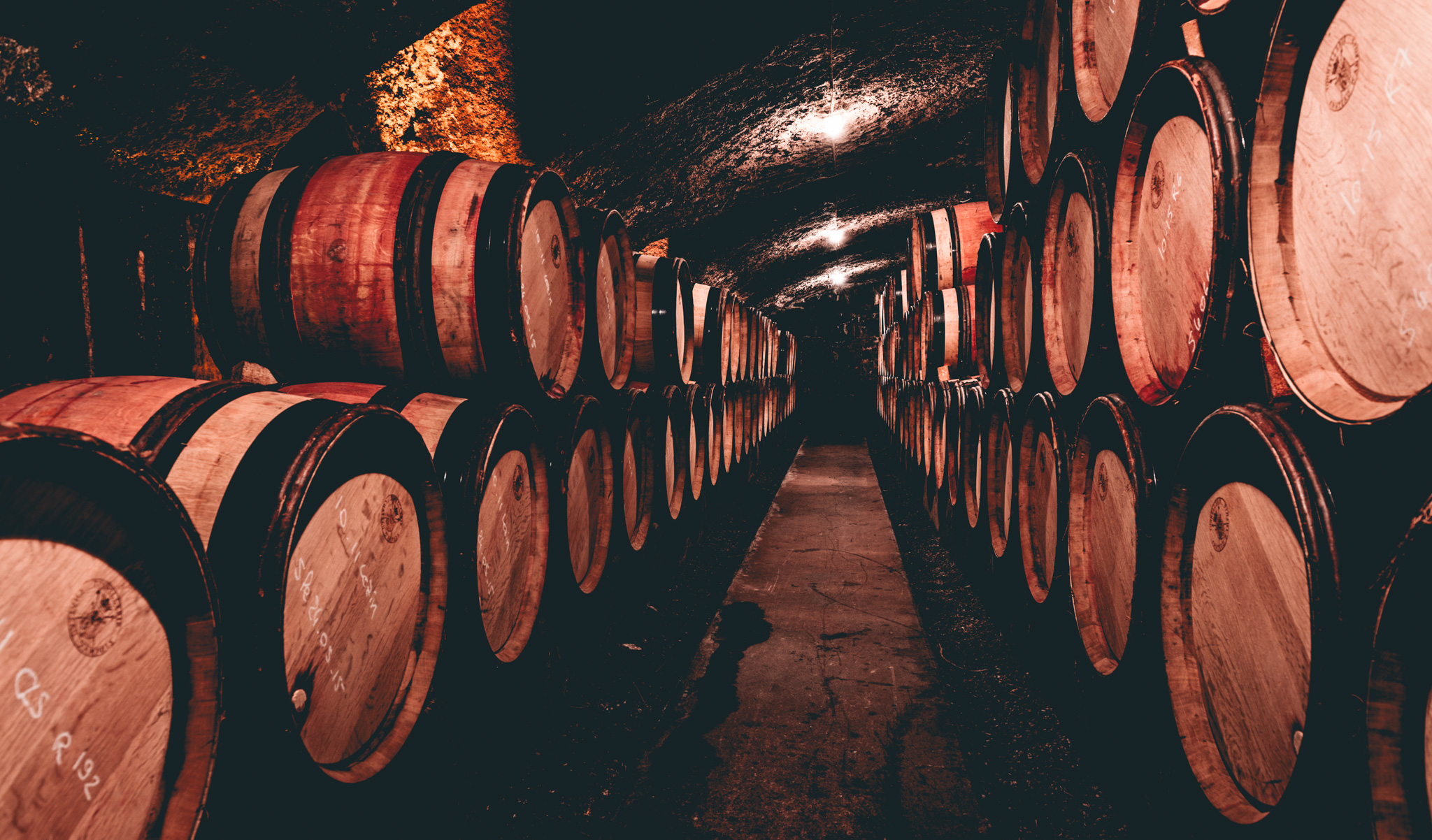 France : Northern Rhone : In the cellar at Guigal