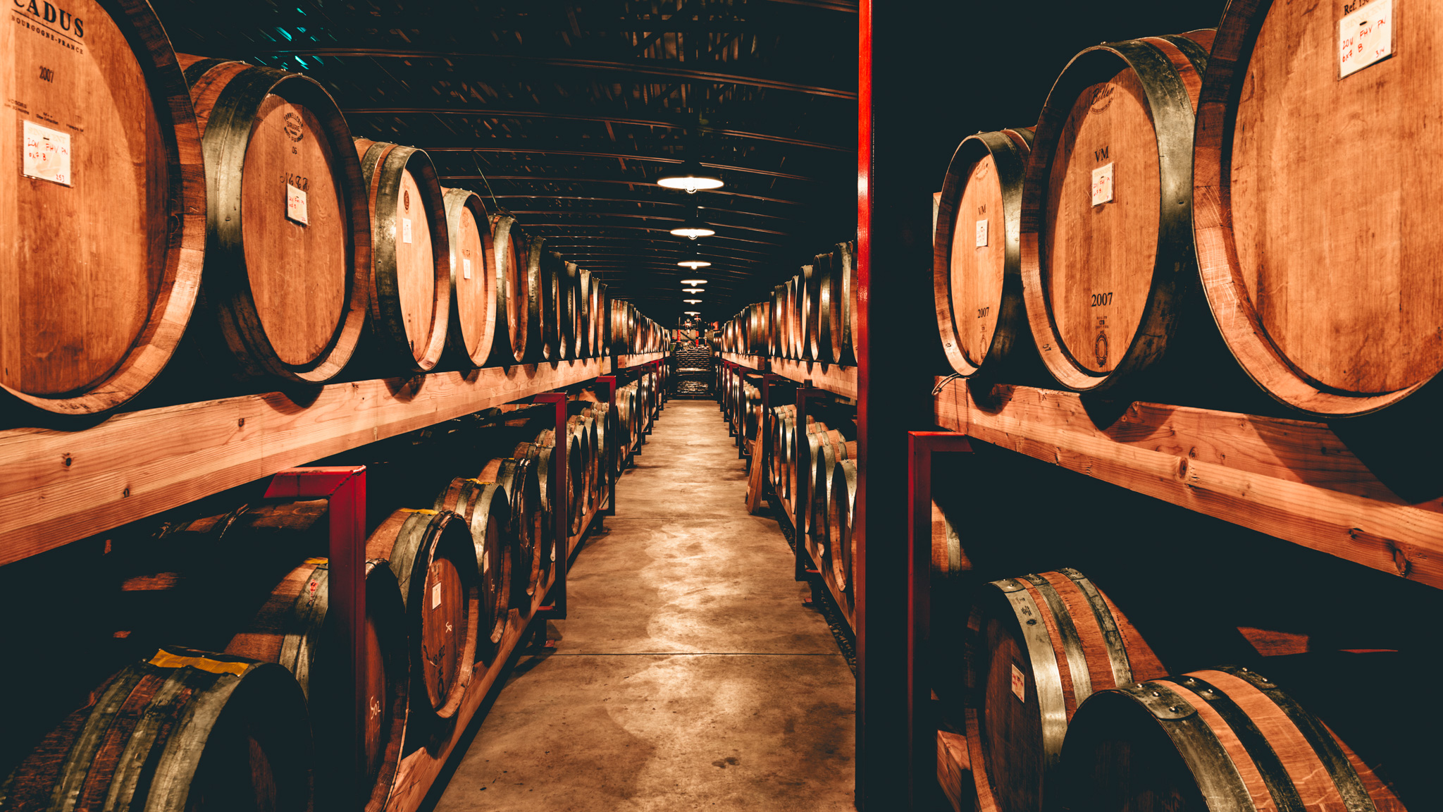 US : Oregon : Barrels at St. Innocent's winery in the Eola-Amity Hills AVA