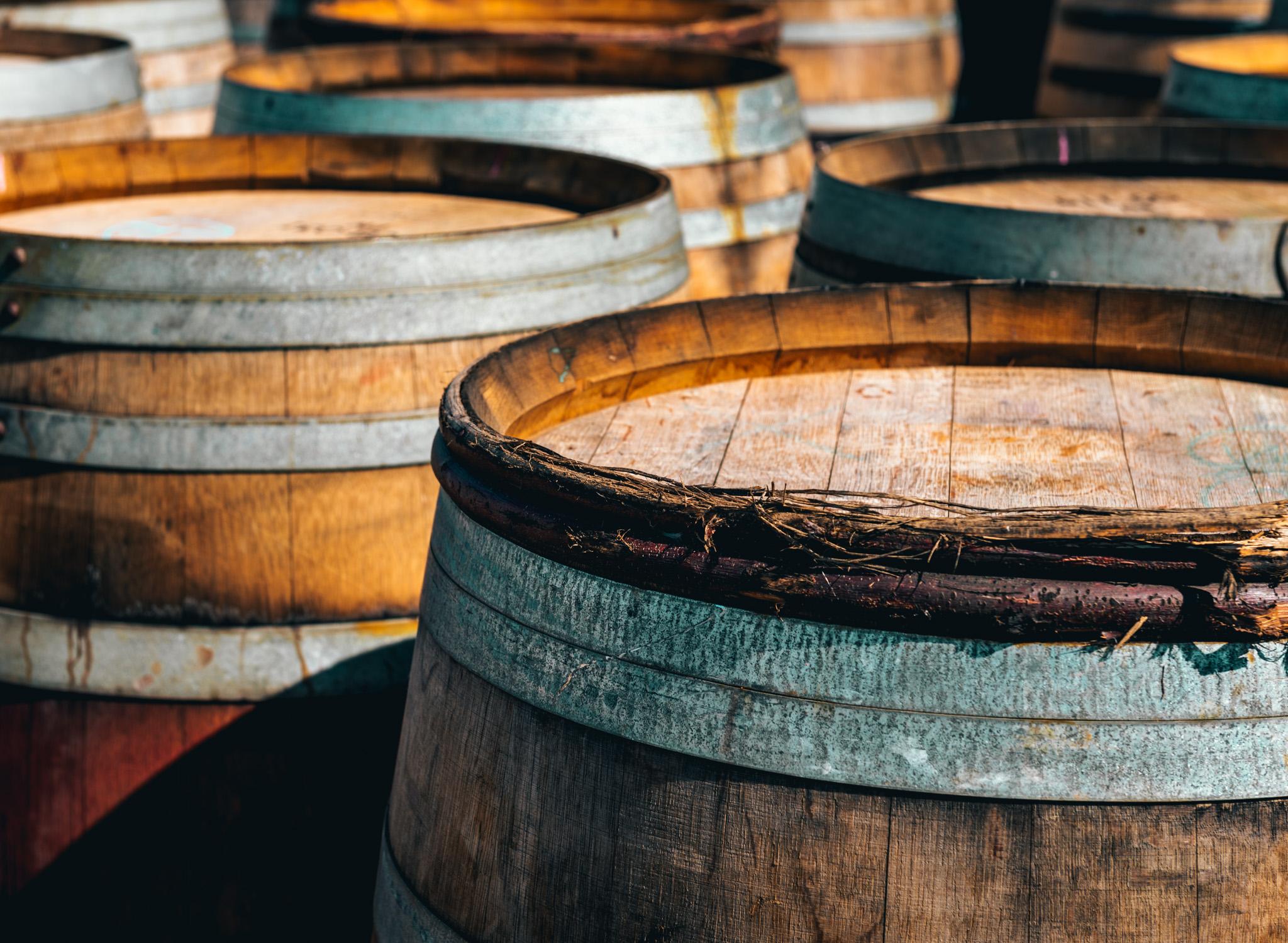 US : Oregon : Barrels at Bergstrom Vineyards