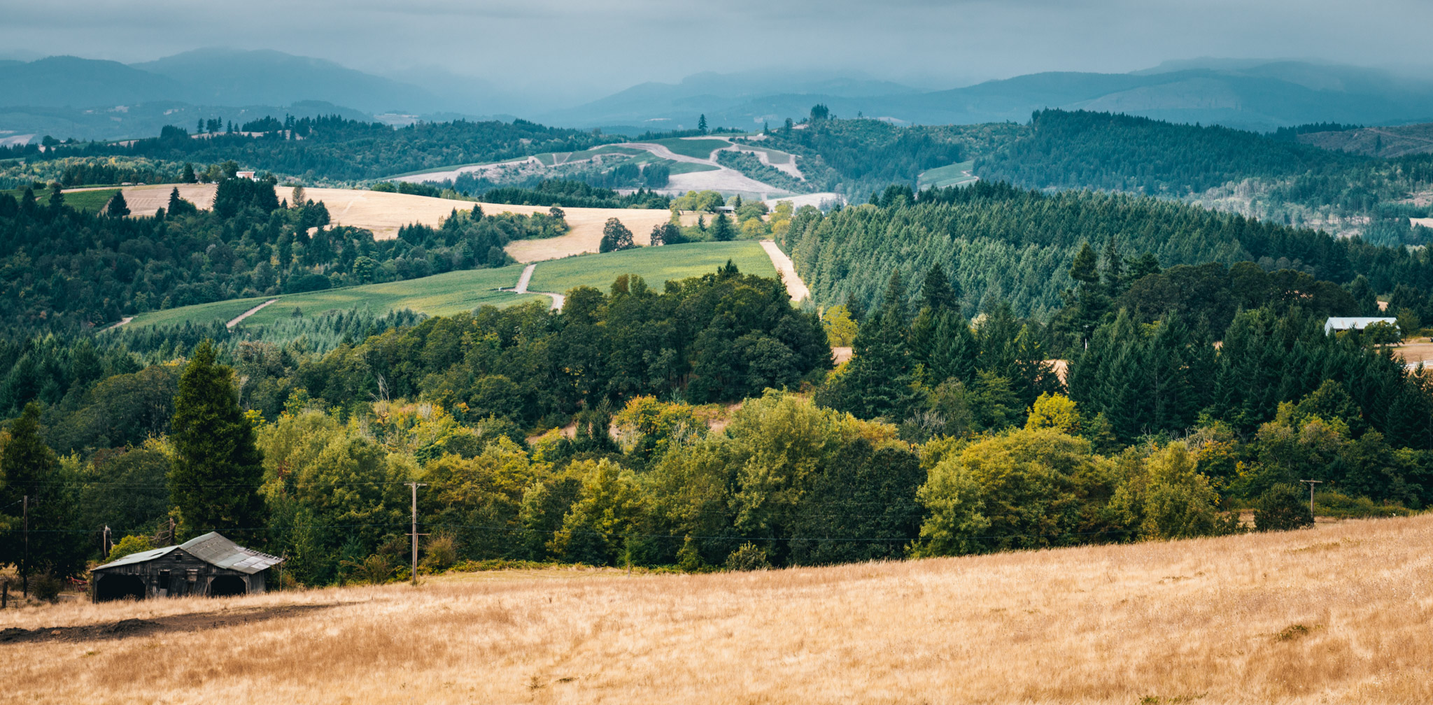 US : Oregon : A view of the Willamette Valley from Bald Peak Rd in Newberg
