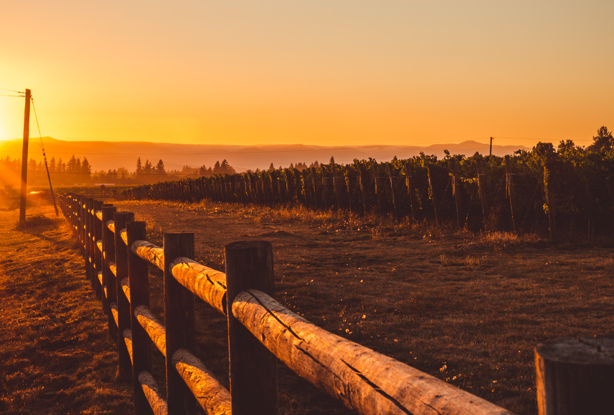 US : Oregon : The sun sets on the Willamette Valley