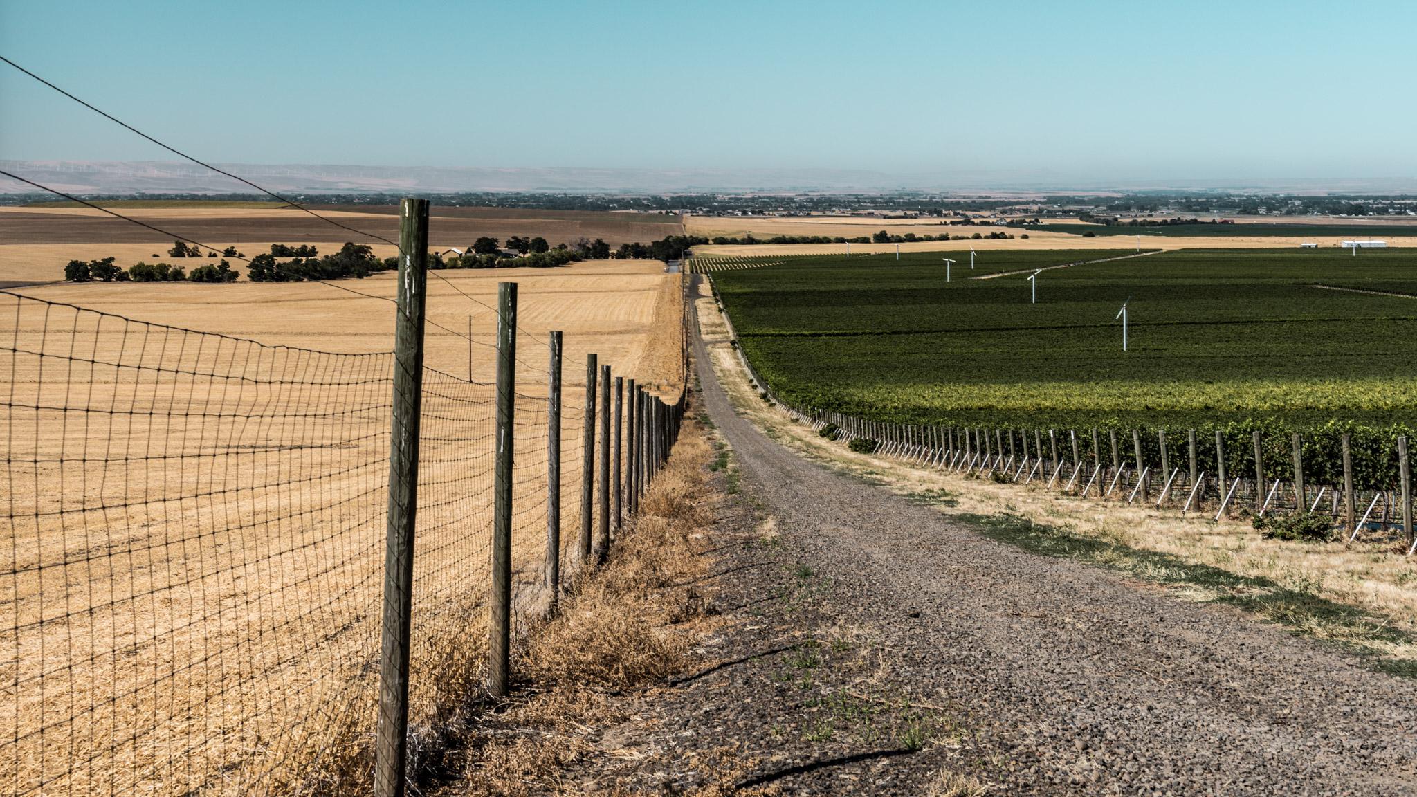 US : Washington : State Line Rd, Oregon on the left and Washington on the right