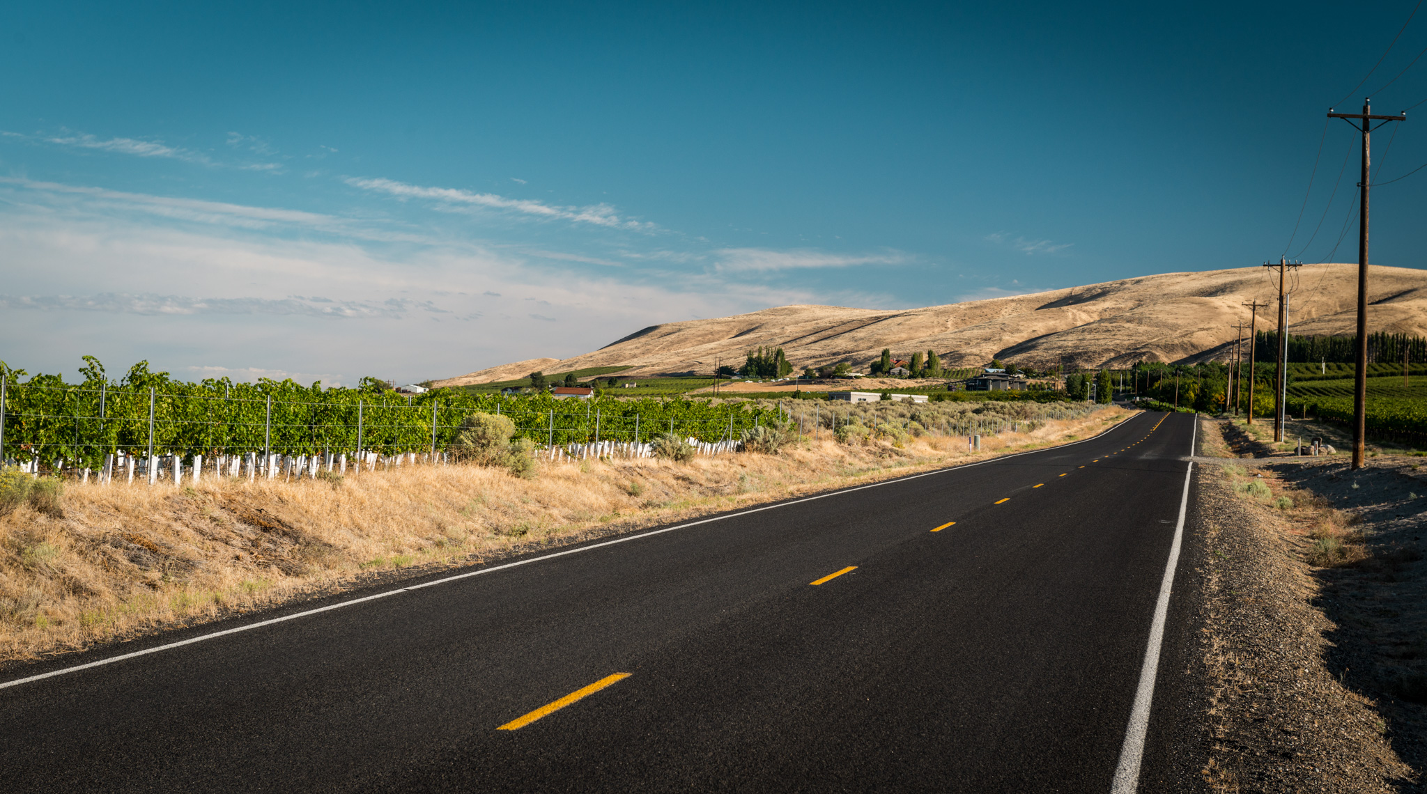 US : Washington : Red Mountain AVA