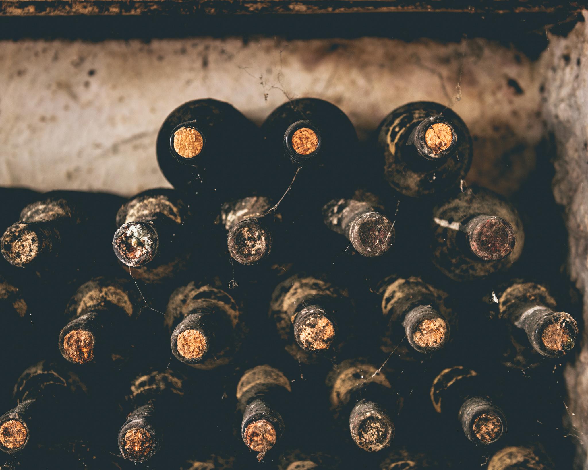 Italy : Piedmont : Beautiful old bottles at Azelia