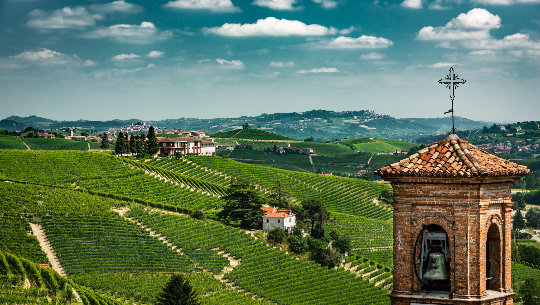 Italy : Piedmont : Clock tower, Cannubi vineyard, and il Cedro in the distance