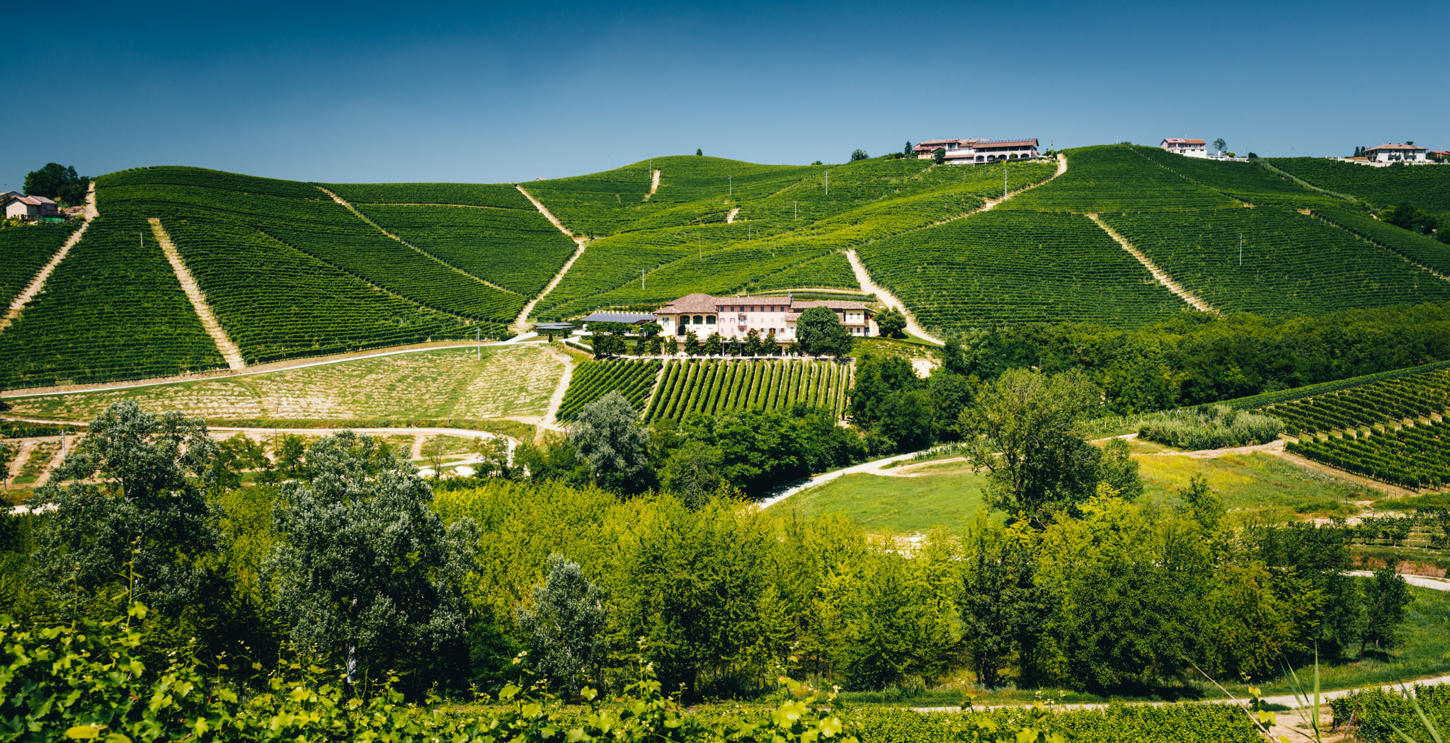 Italy : Piedmont : Asili, Martinenga and Rabaja vineyards in Barbaresco, with Marchesi di Gresy's estate in the middle