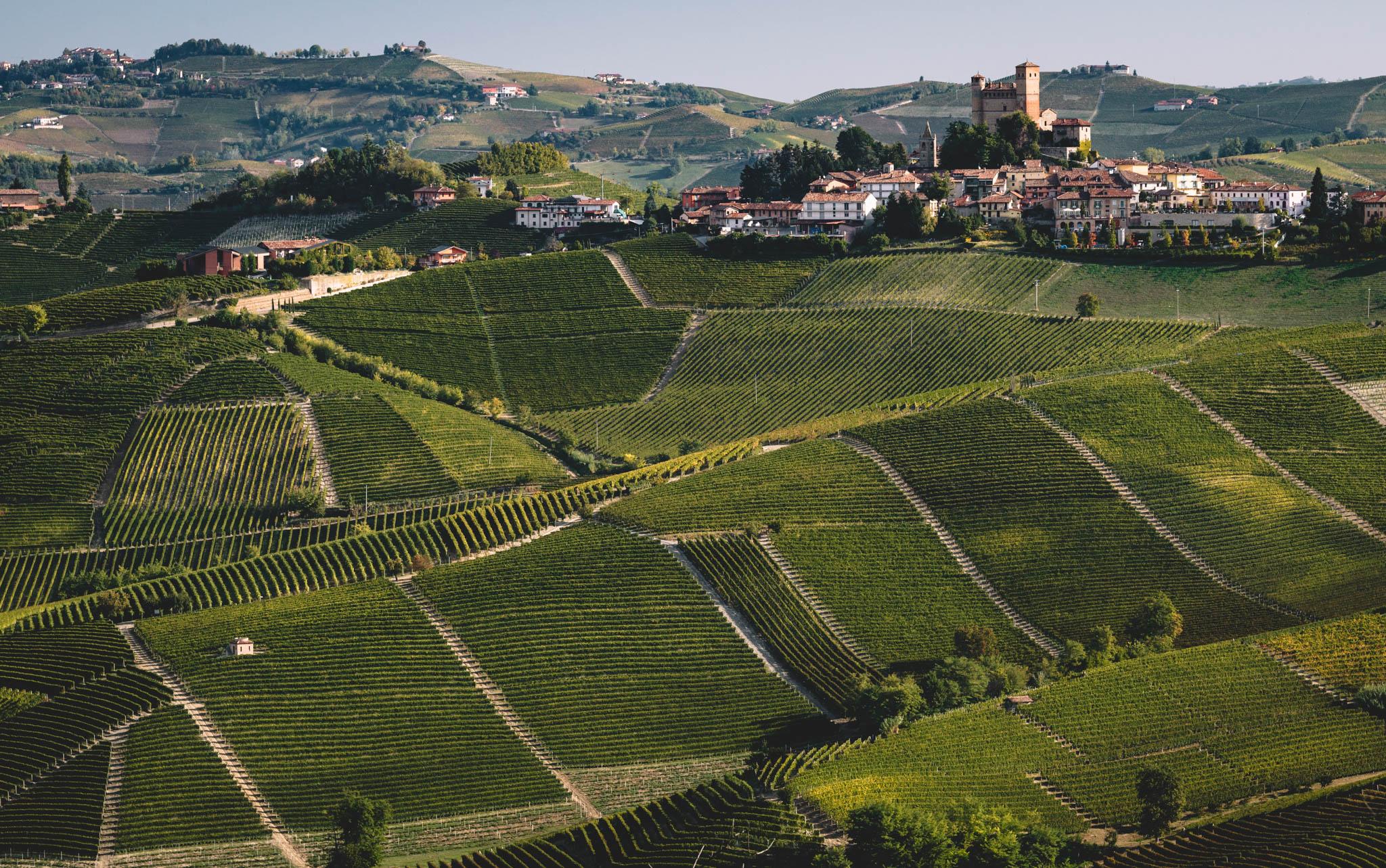 Italy : Piedmont : Vignarionda and Serralunga d'Alba