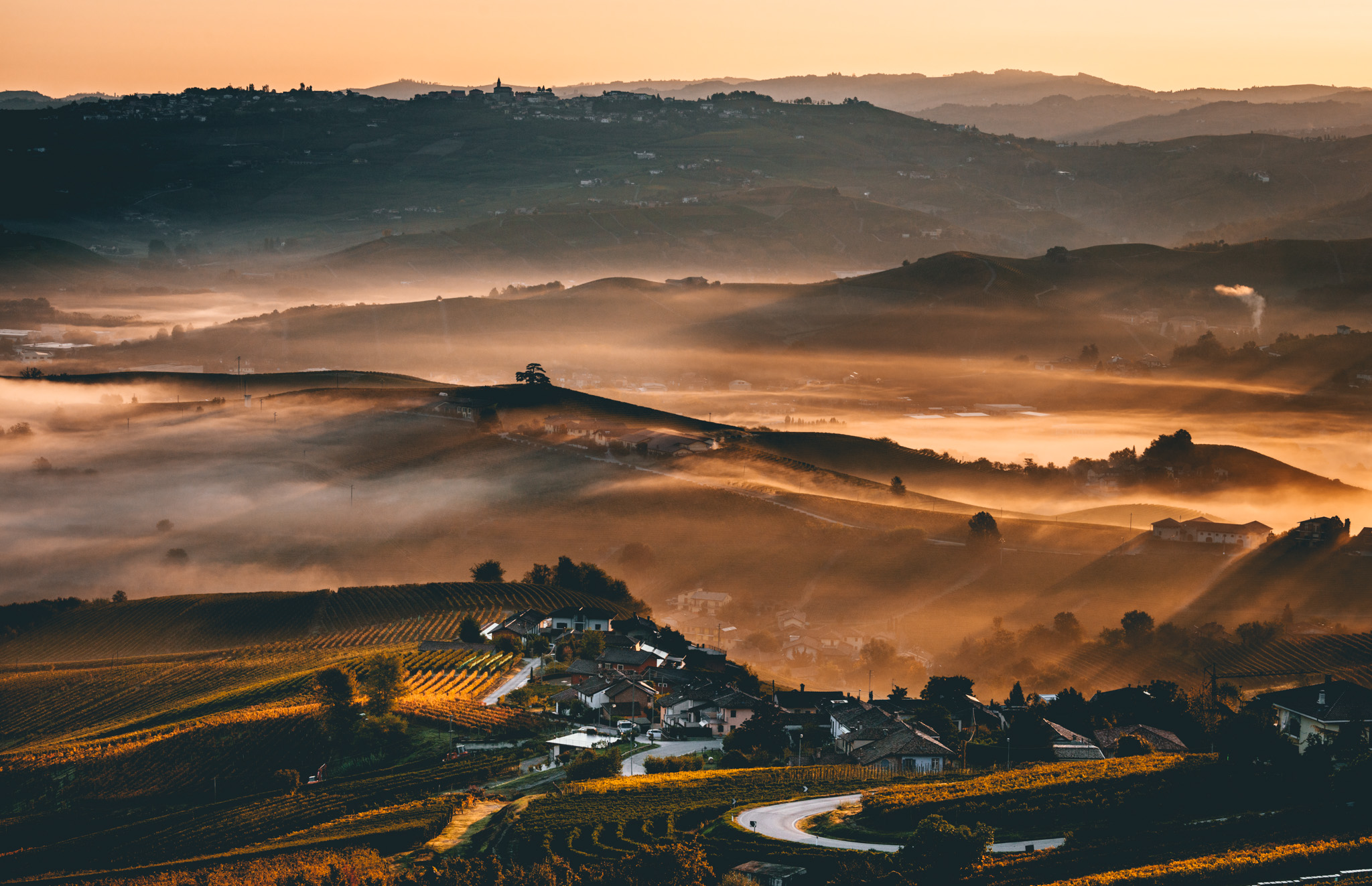 Italy : Piedmont : Nebbia