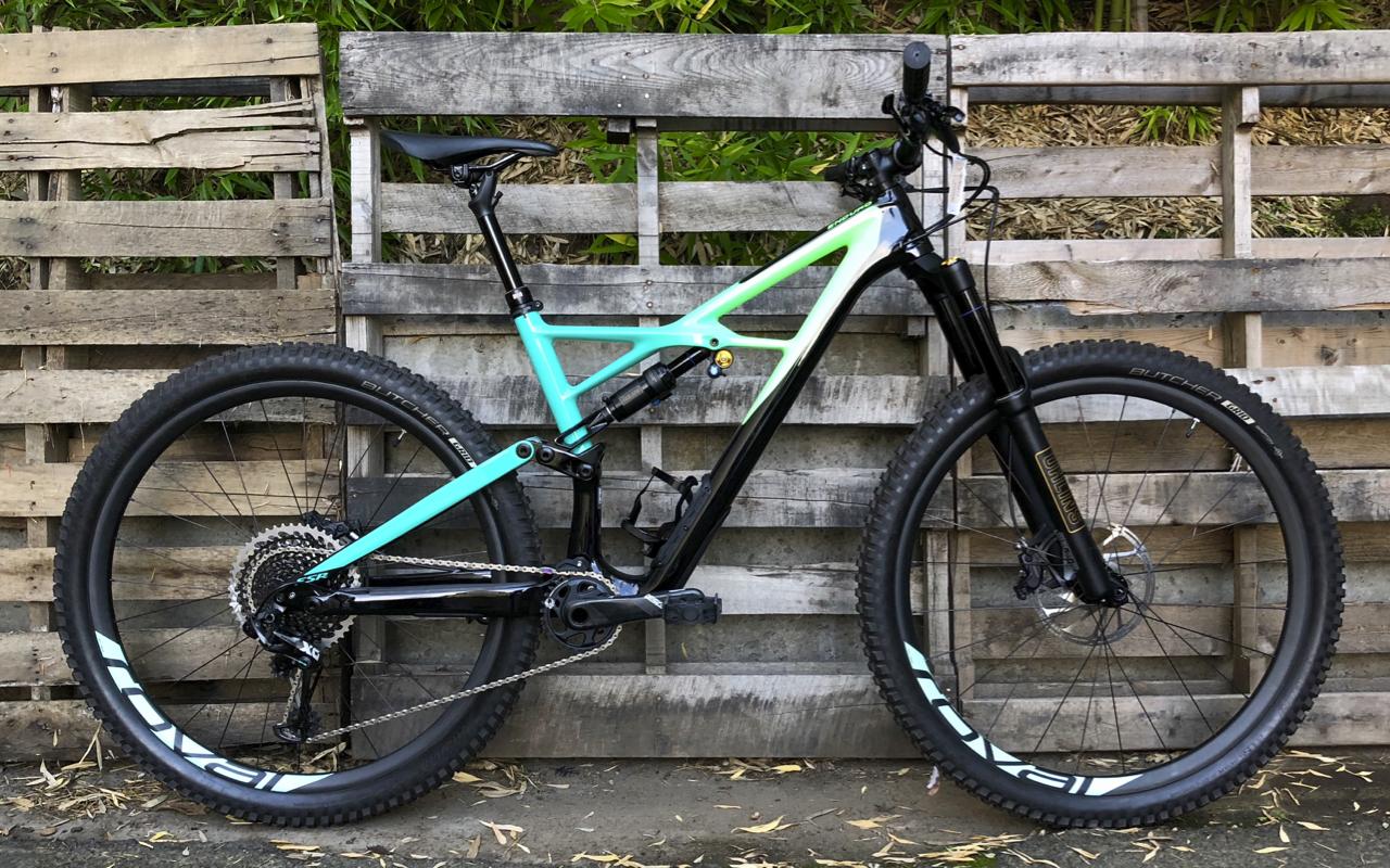 Specialized Enduro Pro Carbon 29 (L) 18 - WAS: $6,500 SALE: $4,800