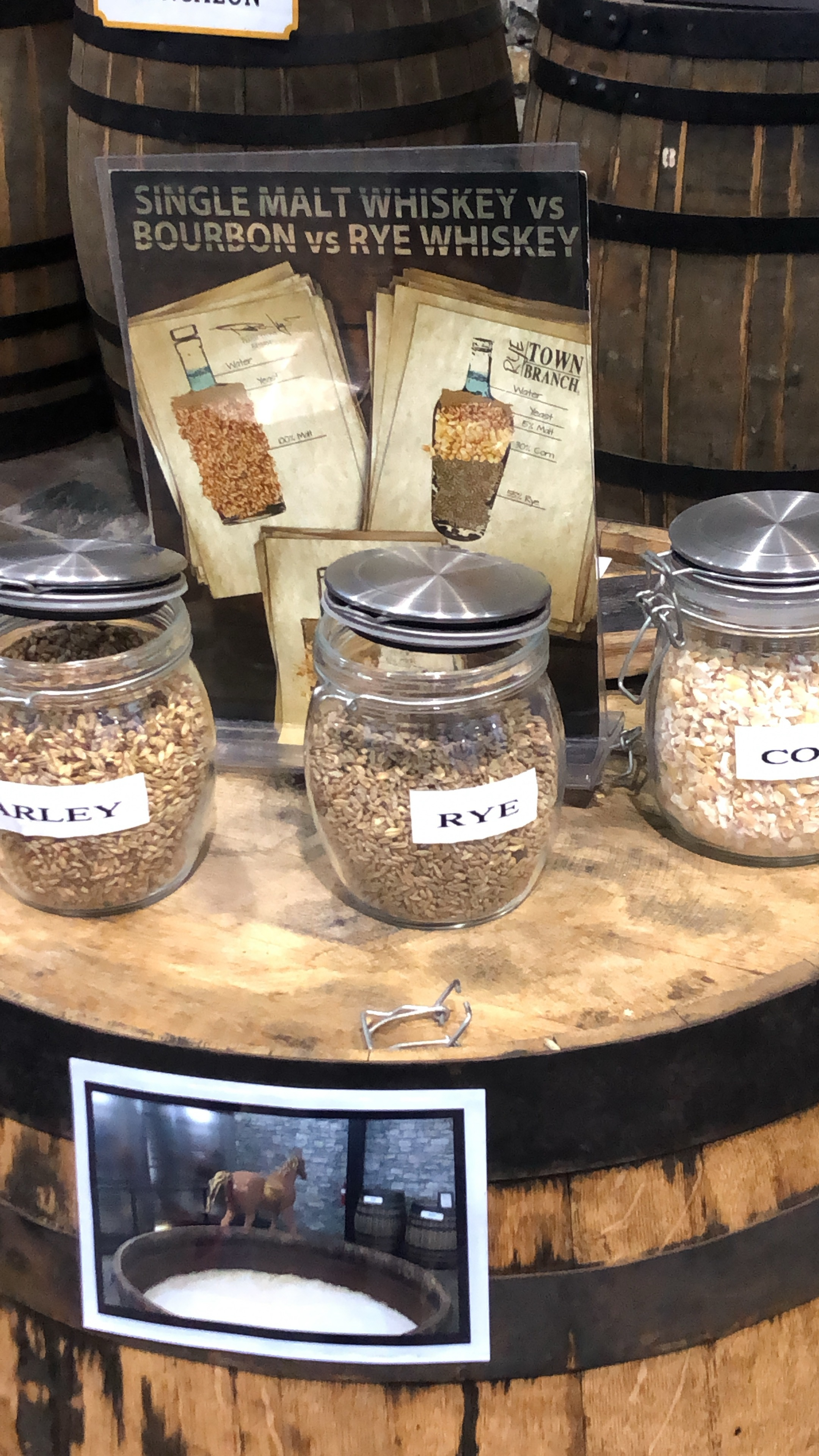 After being utilized for the distillation of bourbon, these various grains will be upcycled by cattle - and made into beef!