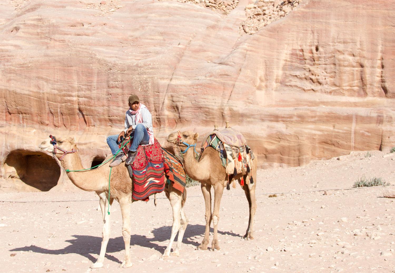 Christian-Schaffer-Jordan-Petra-Camel-001.jpg