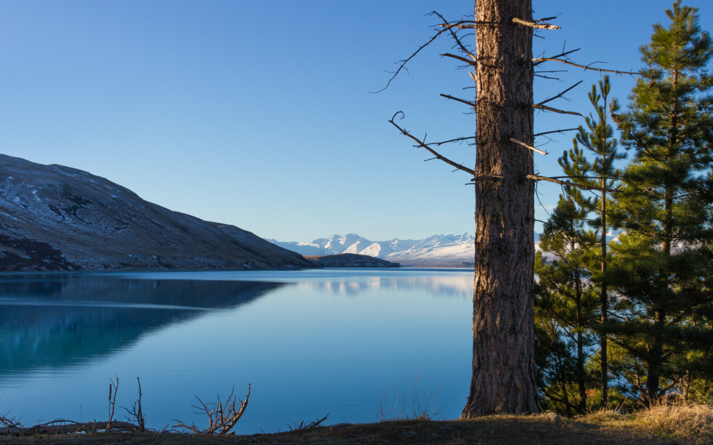 Christian-Schaffer-New-Zealand-Lake-Tekapo.jpg