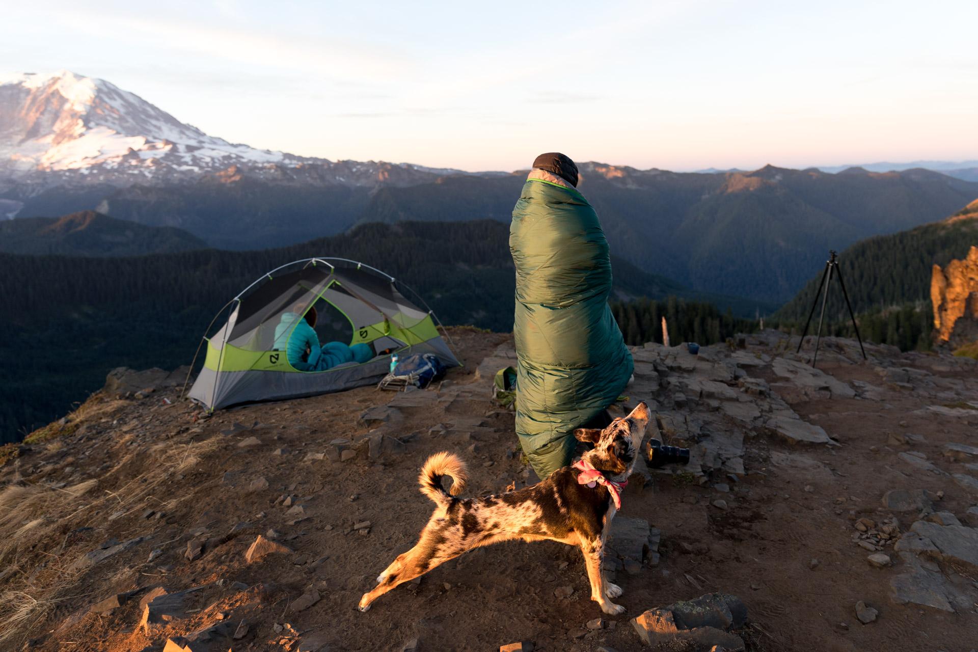 Sam Griggs  @sam_griggs , Navajo Puppy  @navajopuppy