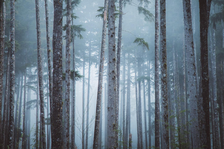 Christian-Schaffer-Canon-Photography-28.jpg