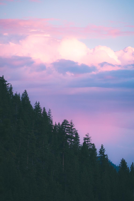 Christian-Schaffer-Visit-Reno-Tahoe-21.jpg