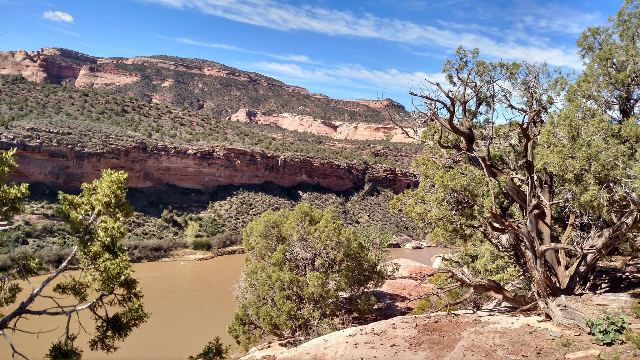Horse Thief Mountain Bike Trail overlooking the Colorado River in Fruita, CO