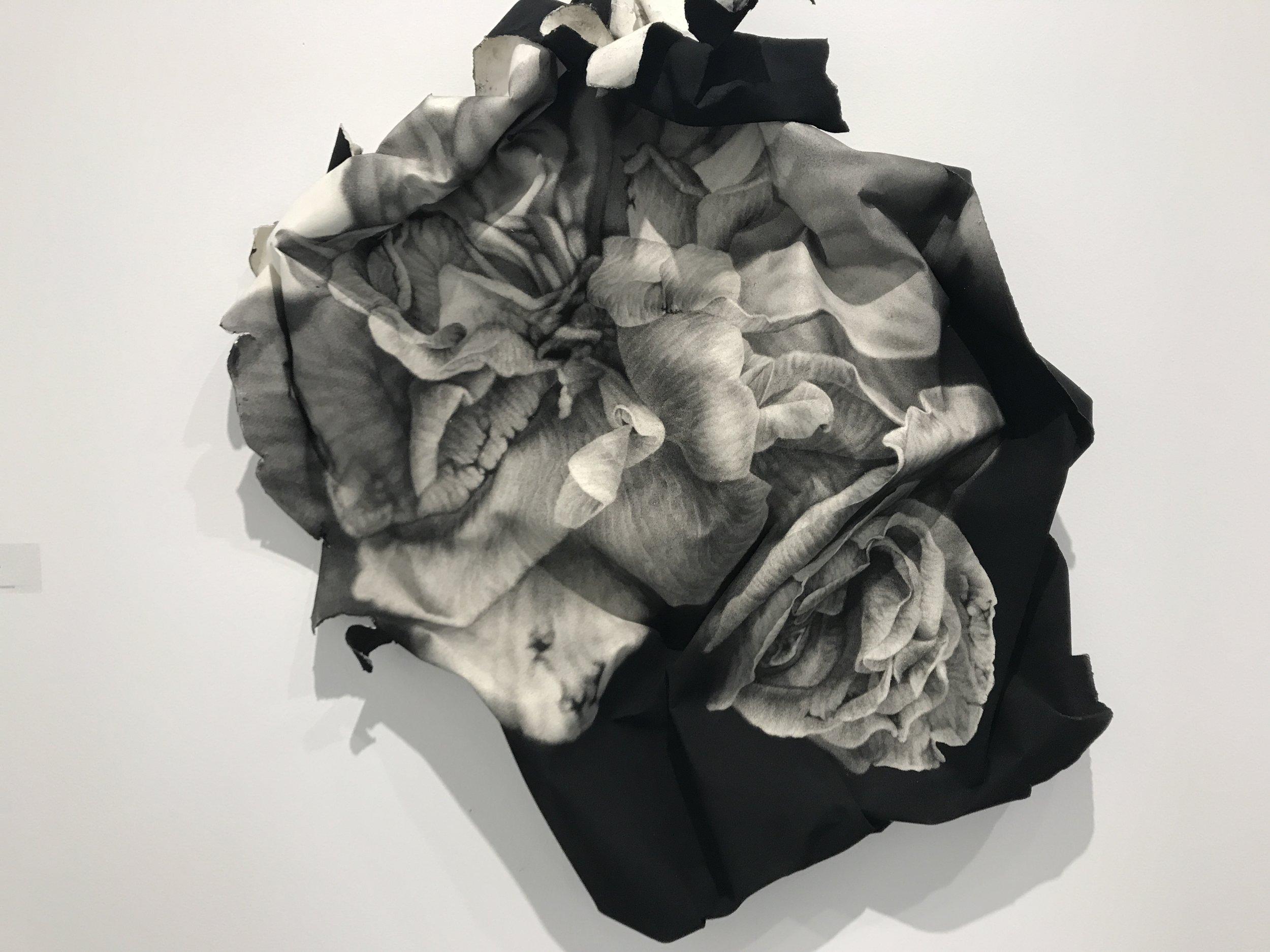 In conte crayon on rag paper,  Crushed Roses , 2017, by Josph Stashkevetch, Von Lintel Gallery, LA, CA.