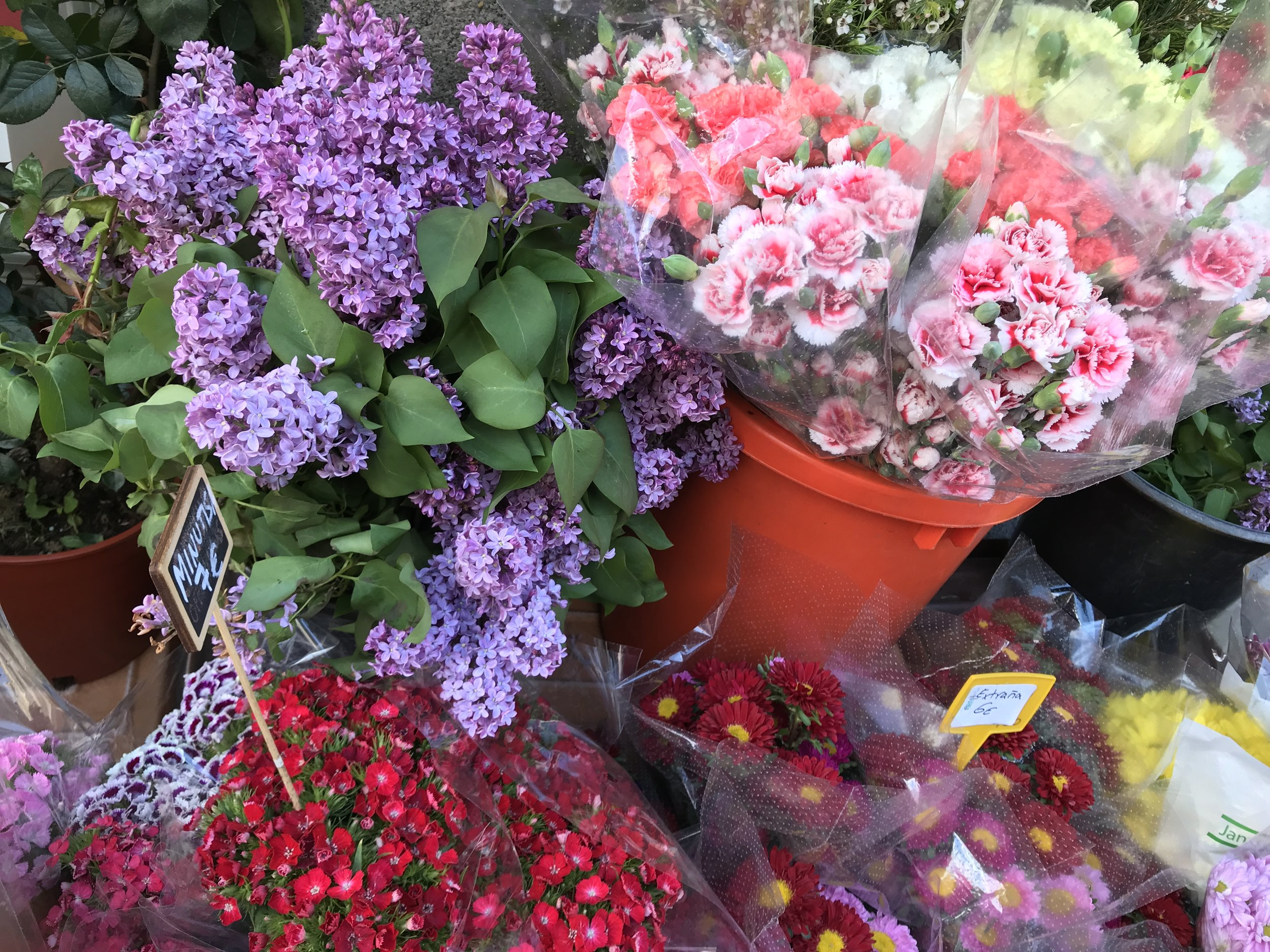 Madrid flower market