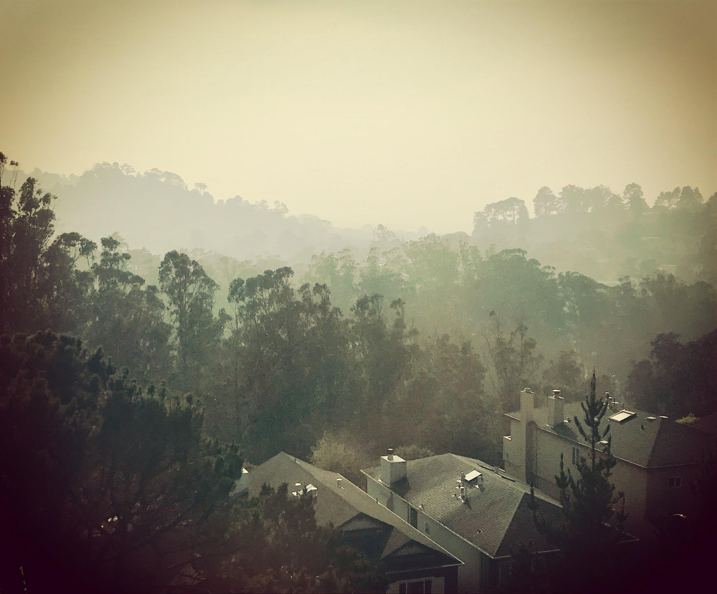 2018_smoke_view_kirshenbaum.JPG