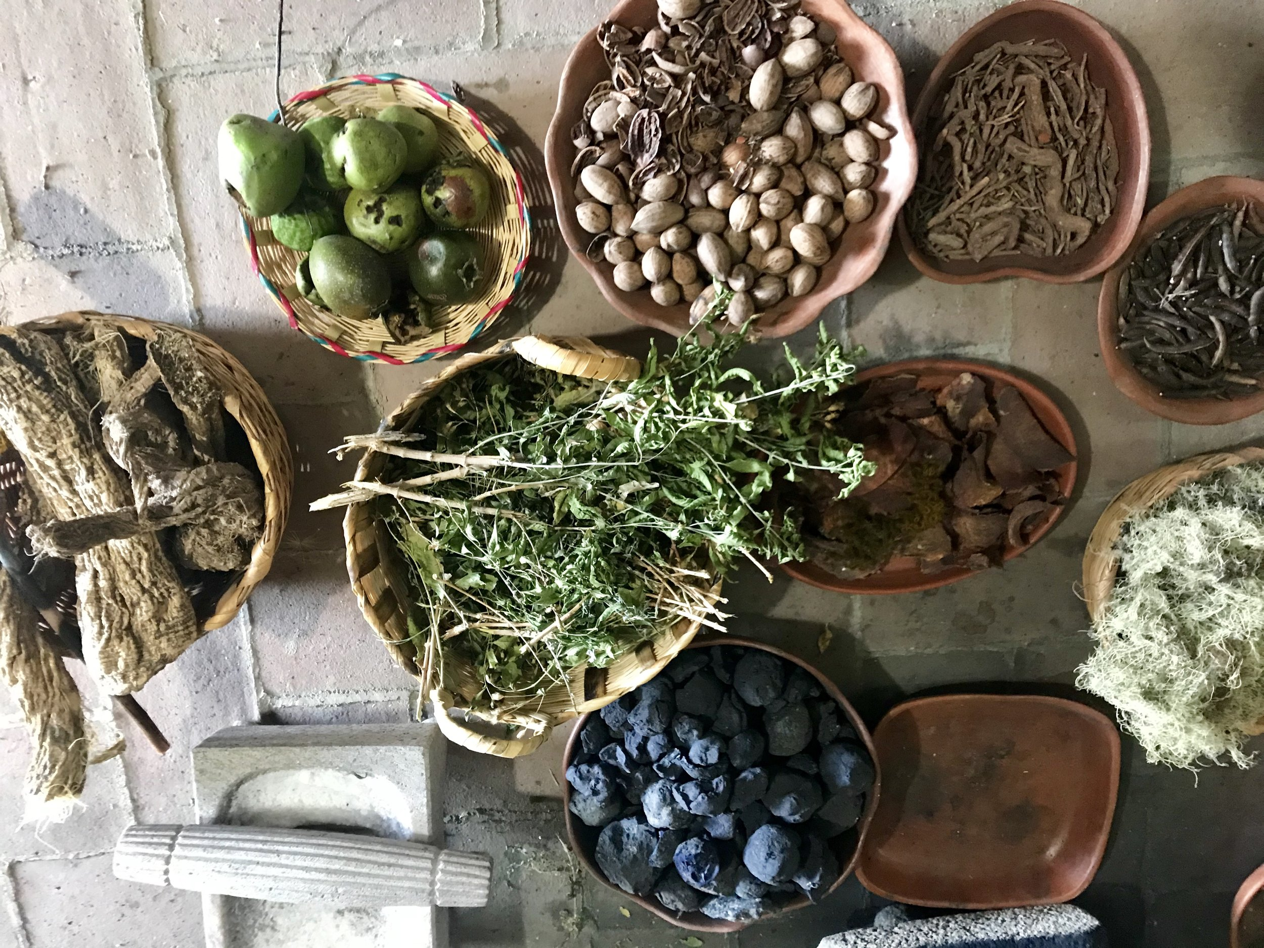Here are more of the ingredients of these natural dyes. Interestingly, although the traditions are ancient, the Zapotecs (who each speak a different dialect, from village to village) make these gorgeous rugs and are continuously developing new natural dyes and colors.