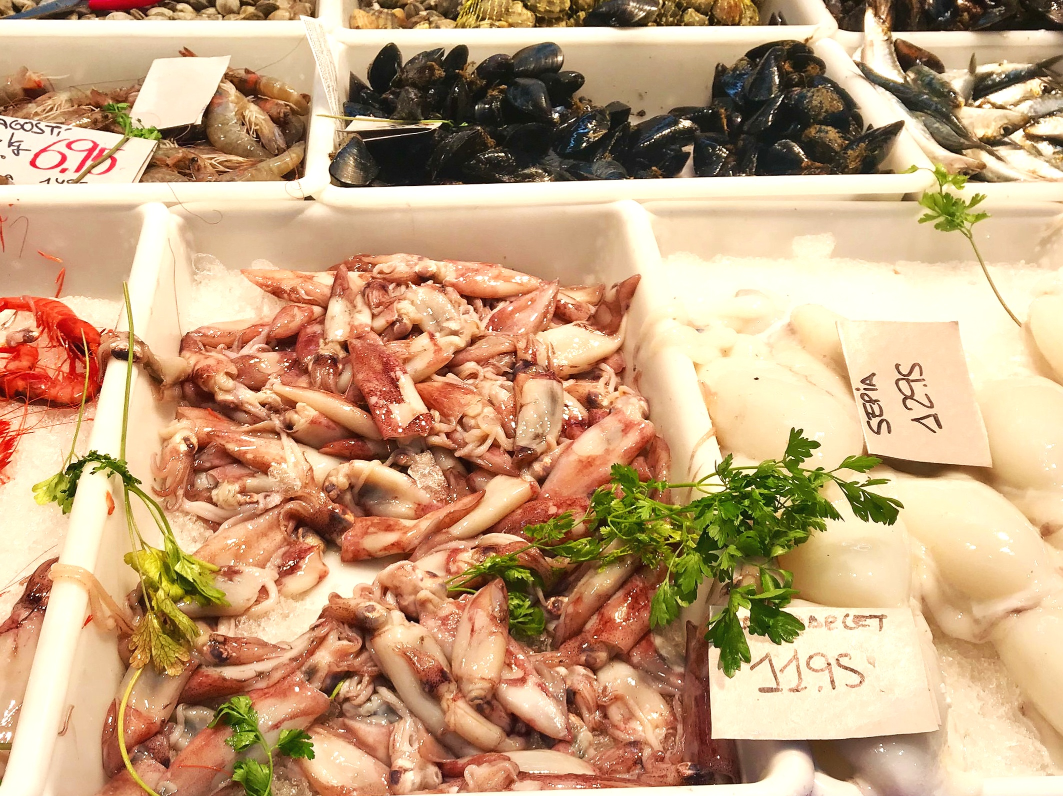 In the morning we stock up at the market. On the right is sepia, my favorite local seafood and yes, it's a member of the  Cephalopoda  family.