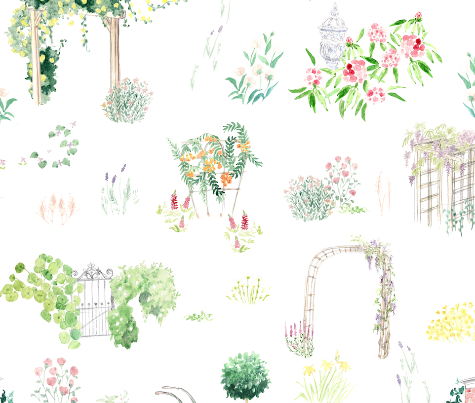 English Garden Pattern (for Anthropologie)