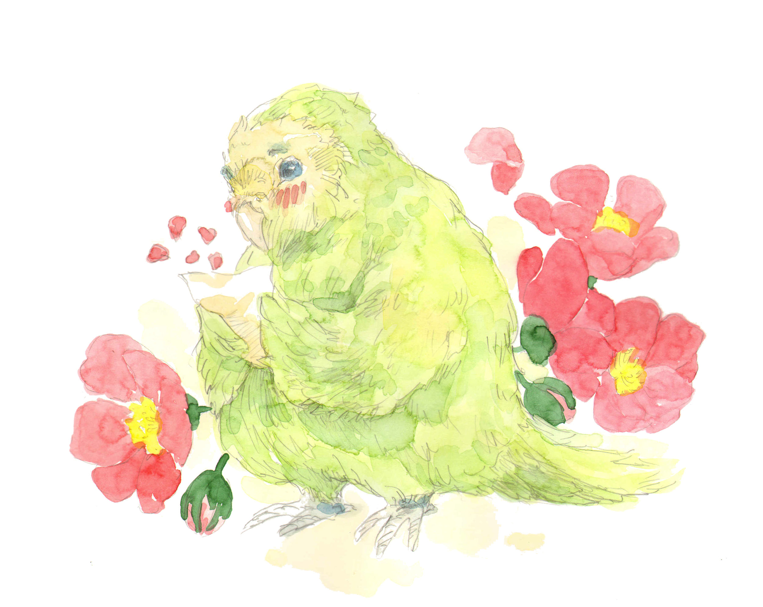 Kakapo Parrot in Love by Lucy Kagan