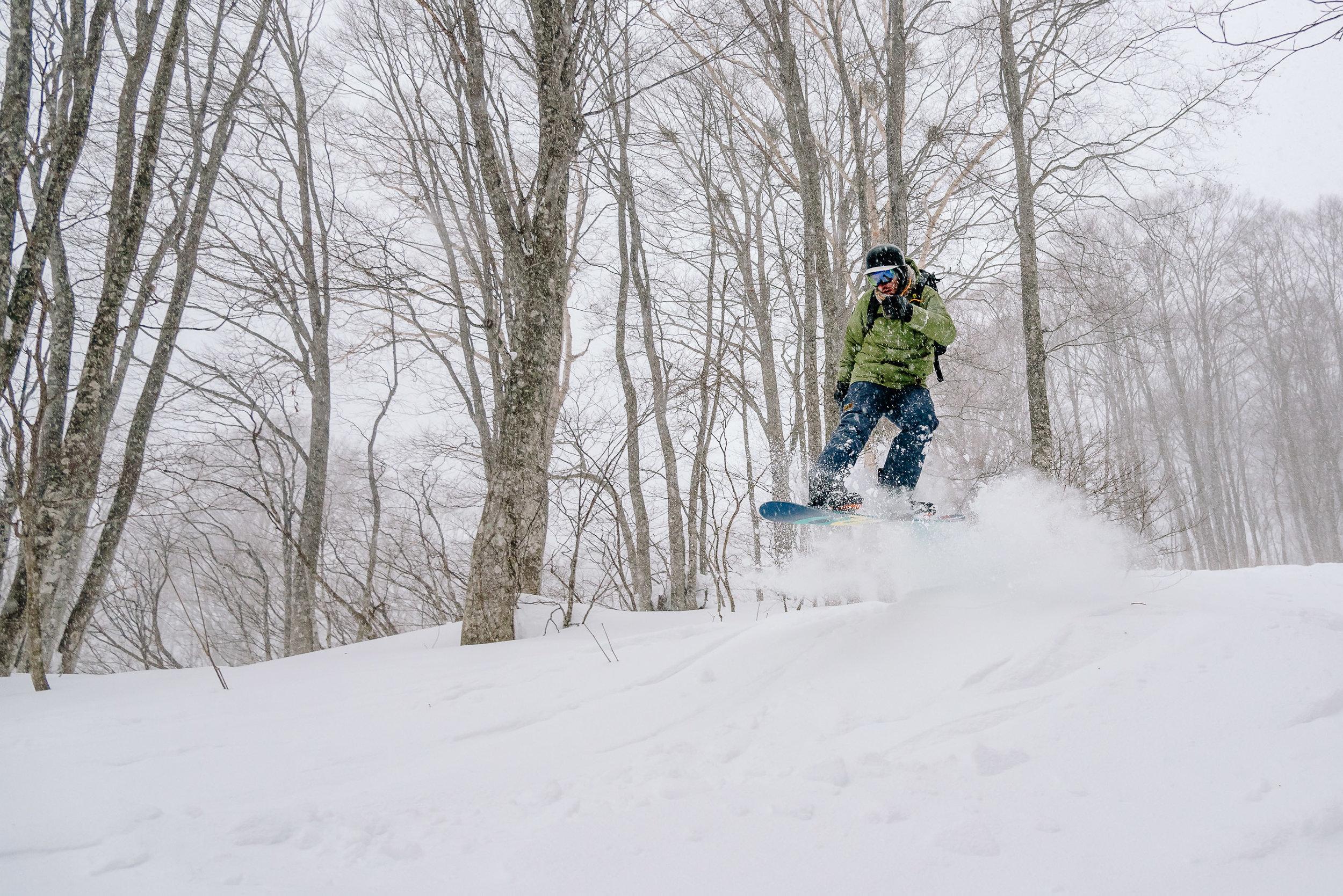snow-7855.jpg