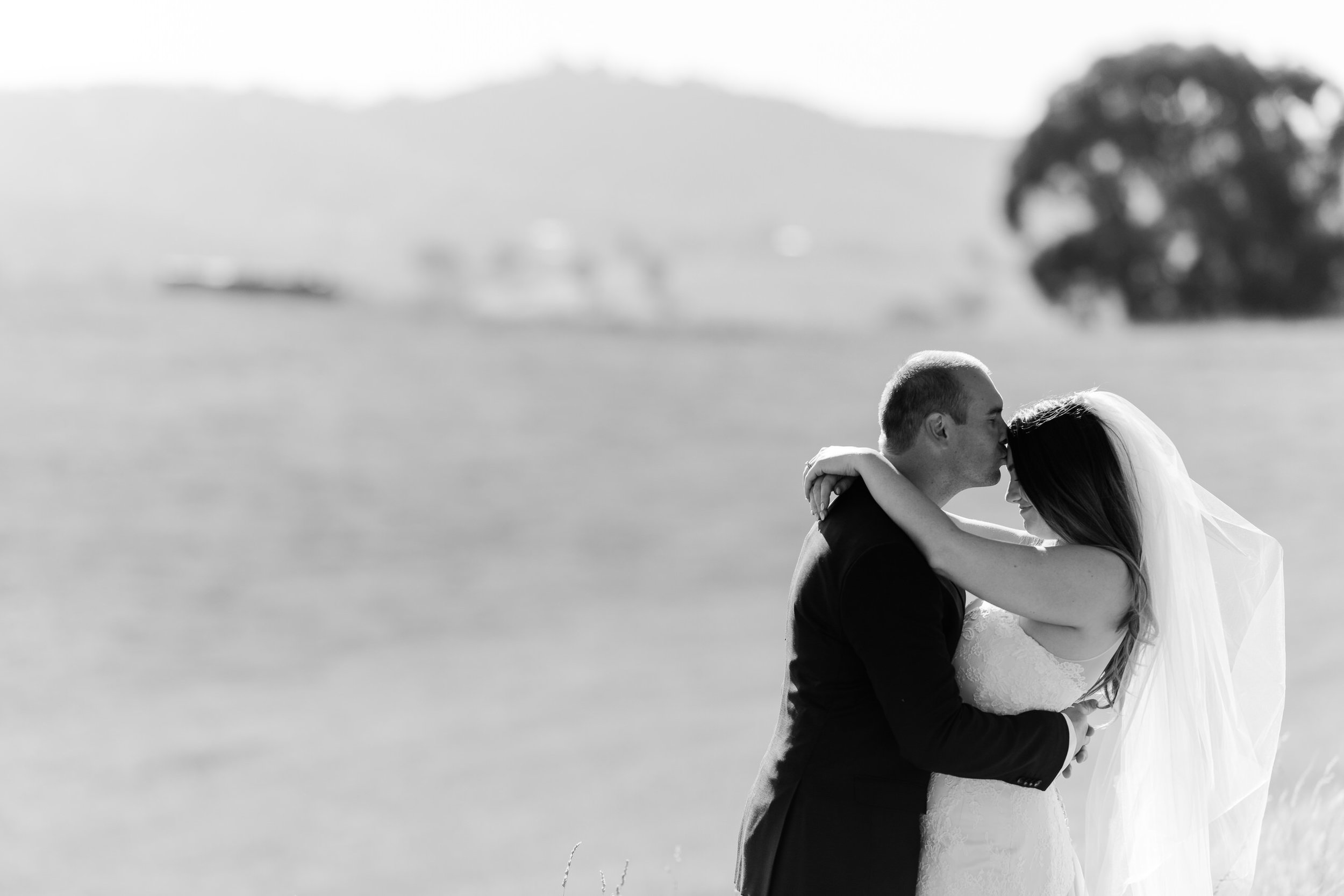 Justin_And_Jim_Photography_Balgownie_Winery_Wedding40.JPG