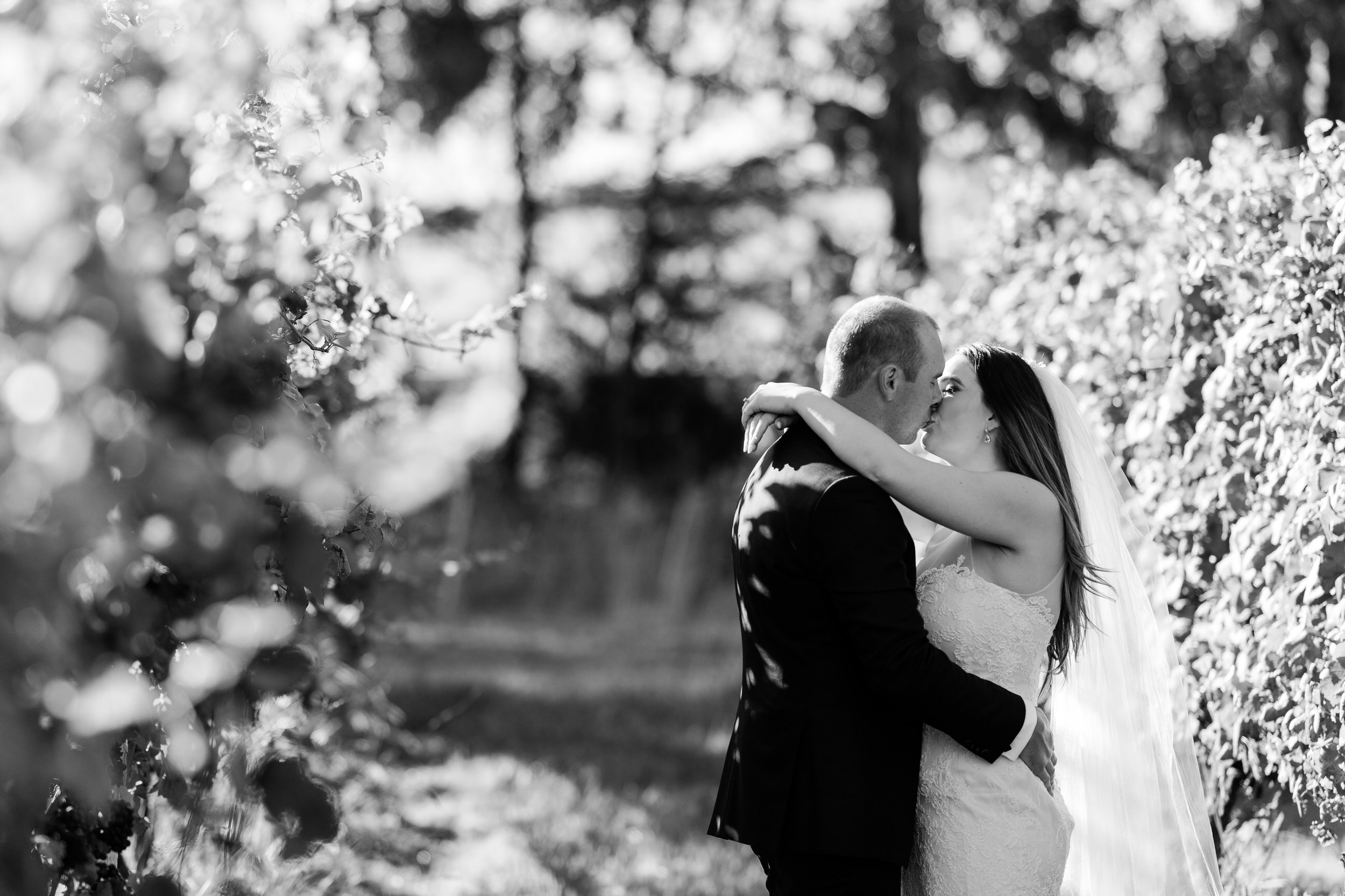 Justin_And_Jim_Photography_Balgownie_Winery_Wedding46.JPG
