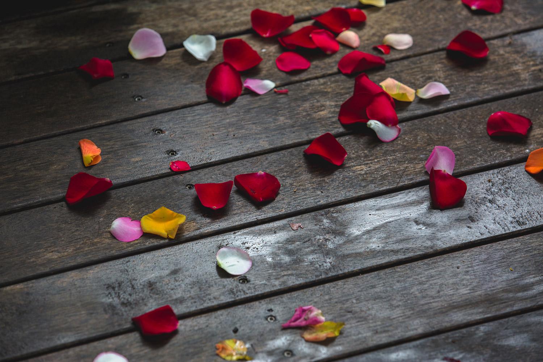 46-sunshine-coast-wedding-photography-all-the-love-in-the-world-noosa-mooloolaba-glasshouse-brisbane-katie-ryan5243.jpg
