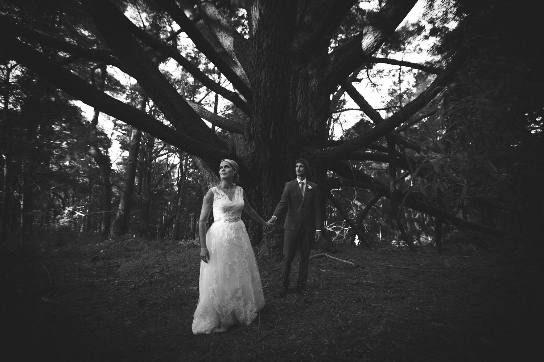 Maleny, Queensland Elopement Wedding - Sunshine Coast, Australian Destination Photographers