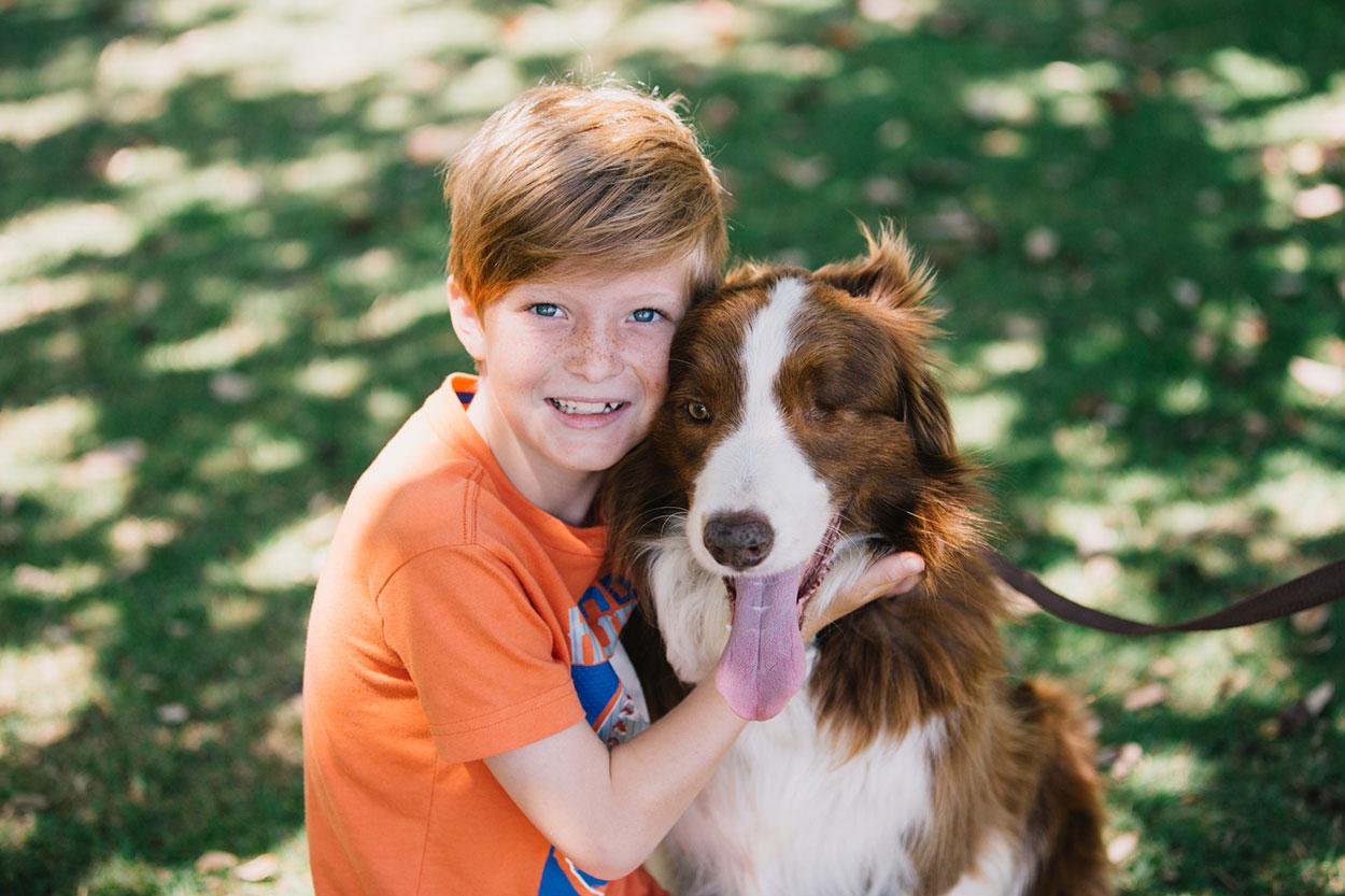 Sunshine Coast, Australian Pet Photographers - Noosa Animal Destination
