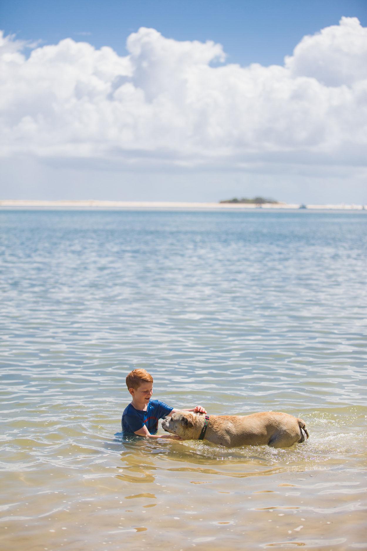 sunshine-coast-animal-photographer-animal-mooloolaba-maroochydore-buderim-mudjimba-marcoola-coolum-beach-sunrise-noosa-national-park-maleny-caloundra-kawana-all-the-love-in-the-world-dog-australian-07