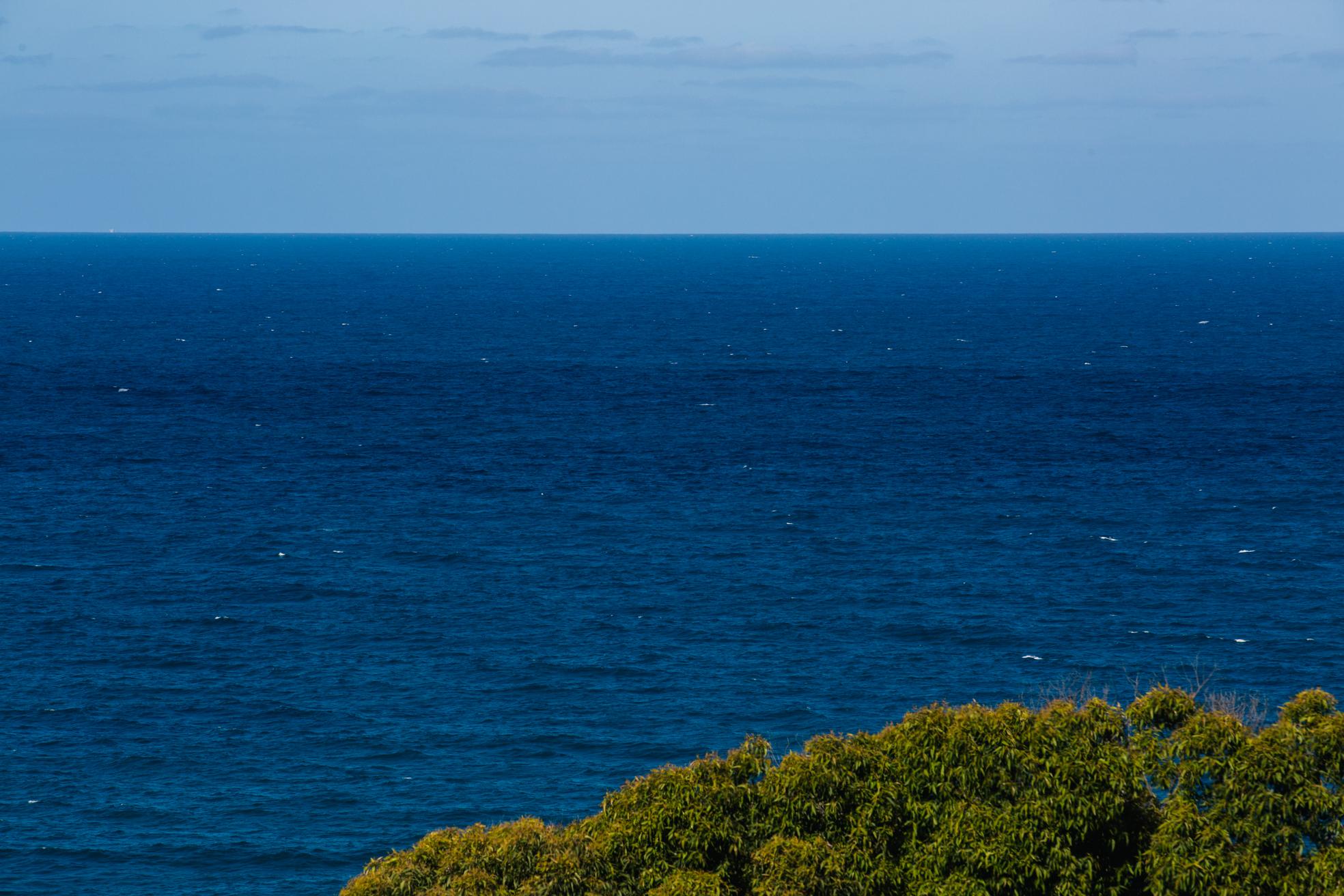 Best Sunshine Coast Photographer - Noosa, Brisbane, Australian Elopement Wedding