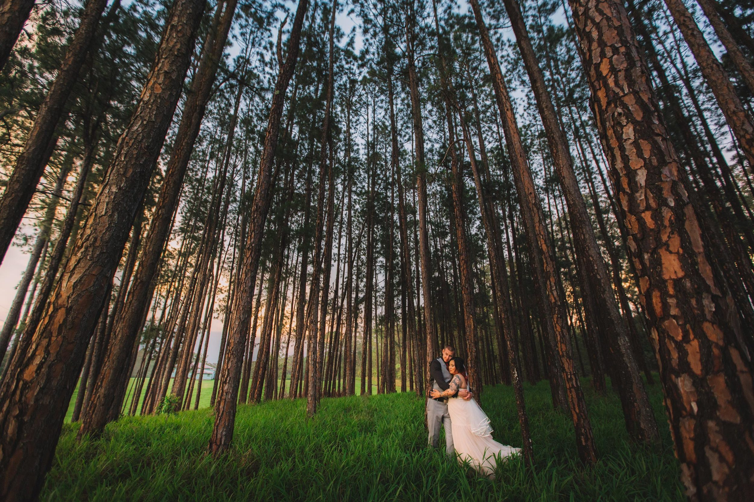 Peachester and Brisbane Eco Friendly Pre Wedding - Noosa, Sunshine Coast, Australian Destination Photographers