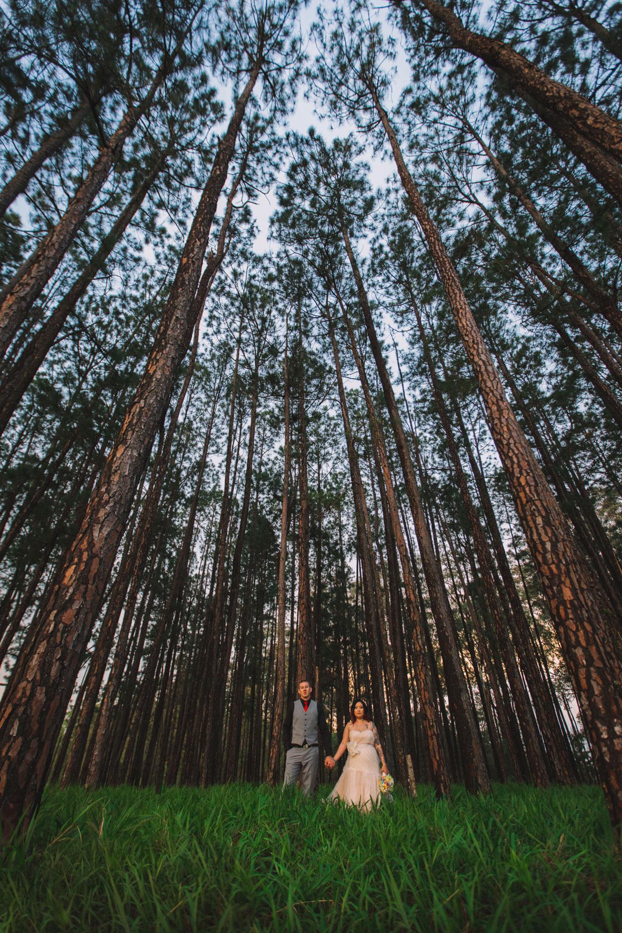 Peachester Wedding - Sunshine Coast, Australian Photographer