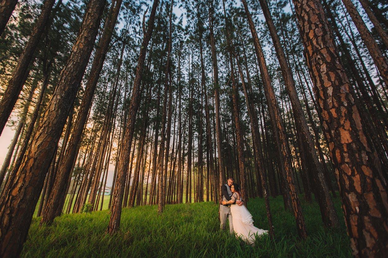 Maleny and Brisbane, Hinterland Destination Pre Wedding - Sunshine Coast, Queensland, Australian Photographers