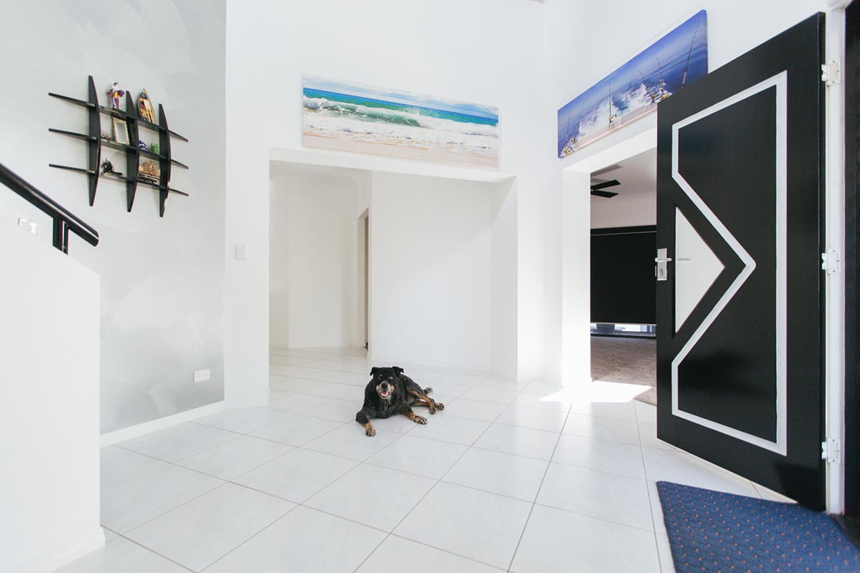 Caloundra Pet Dog Photography - Sunshine Coast, Queensland, Australian Photographers