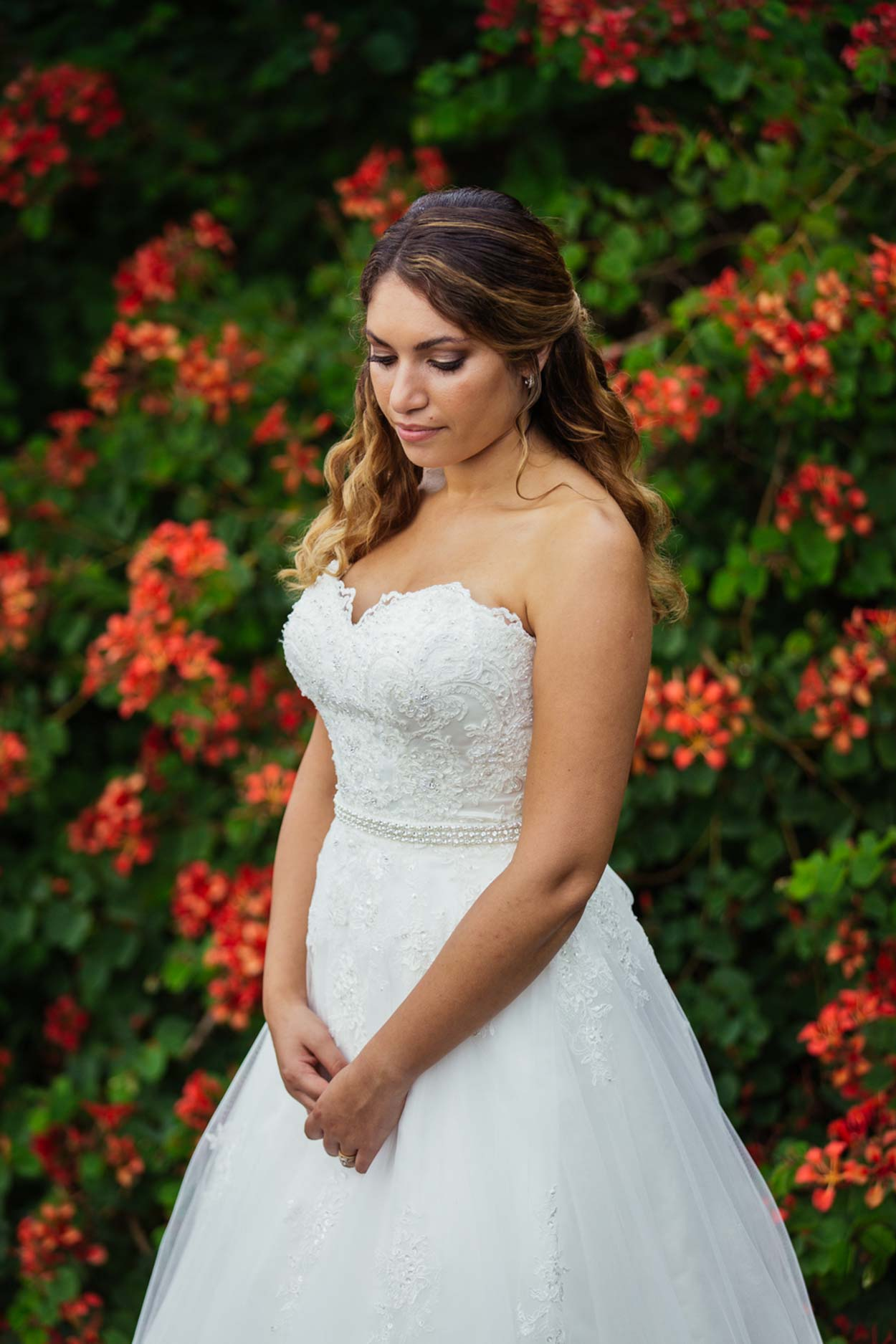 sunshine-coast-destination-wedding-photographers-brisbane-queensland-australian-maleny-noosa-beach-hinterland-montville-flaxton-gold-caloundra-elopement-photos-best-recommended-eco-friendly-packages-98.jpg