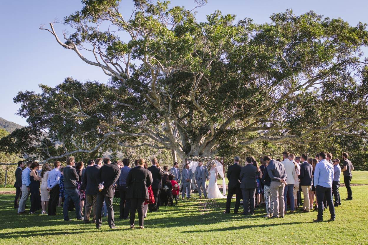 Big Fig Tree, Yandina Station, Sunshine Coast Wedding - Destination Flaxton, Brisbane, Australian