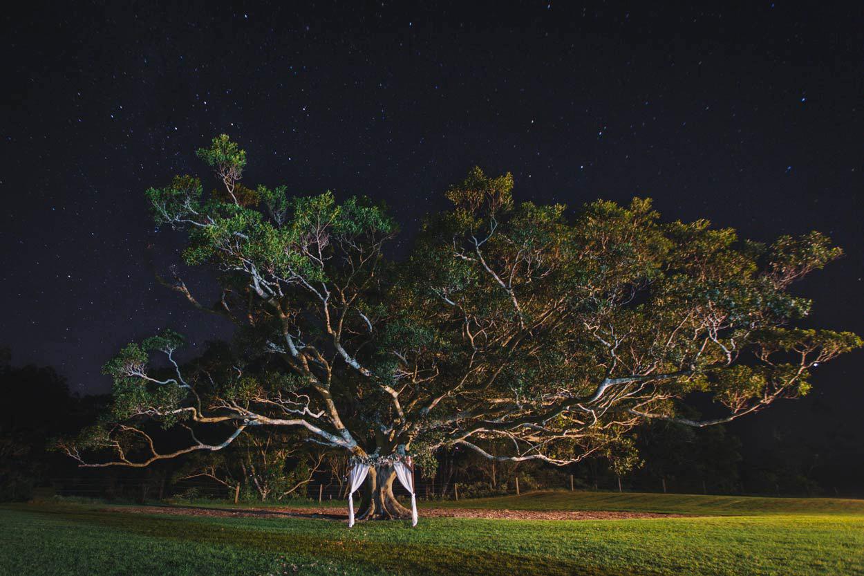 Beautiful Yandina Station, Sunshine Coast Pre Wedding Photographer - Destination Brisbane, Australian