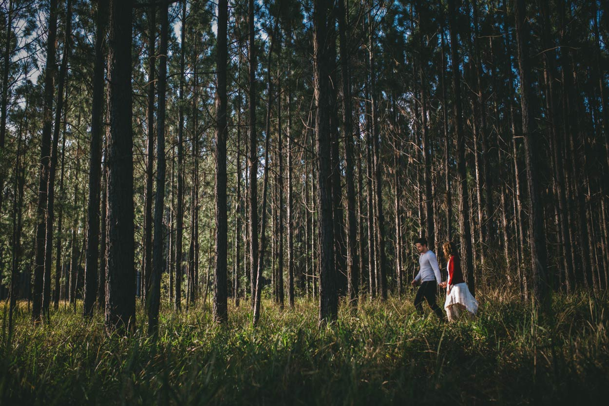 Best Sunshine Coast, Australian Pre Wedding Engagement Photographers - Destination Maleny, Brisbane