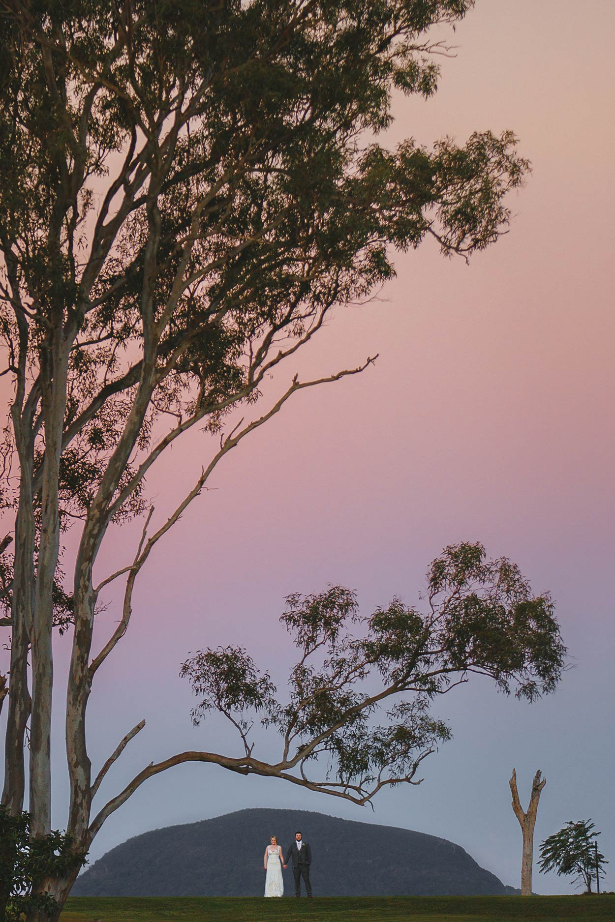 Yandina Station, Sunshine Coast Wedding - Brisbane, Queensland, Australian Pre Destination Photographers